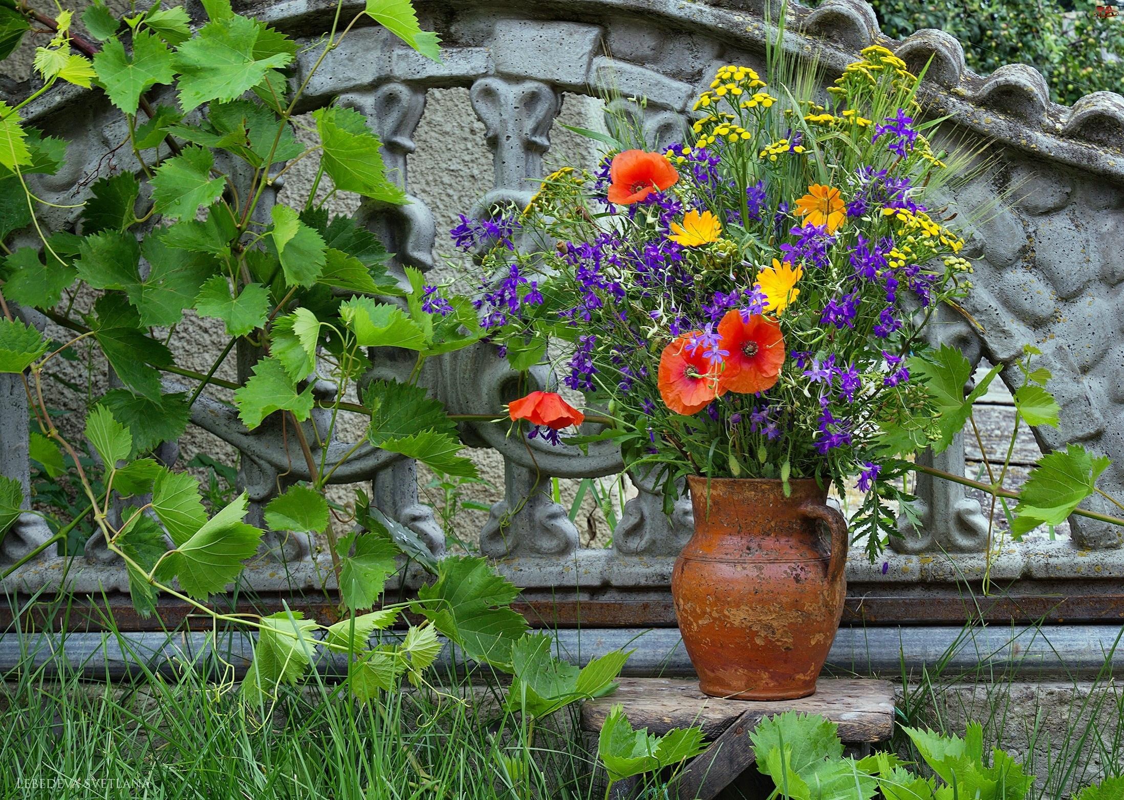 Bukiet, Ogród, Polnych, Kwiatów