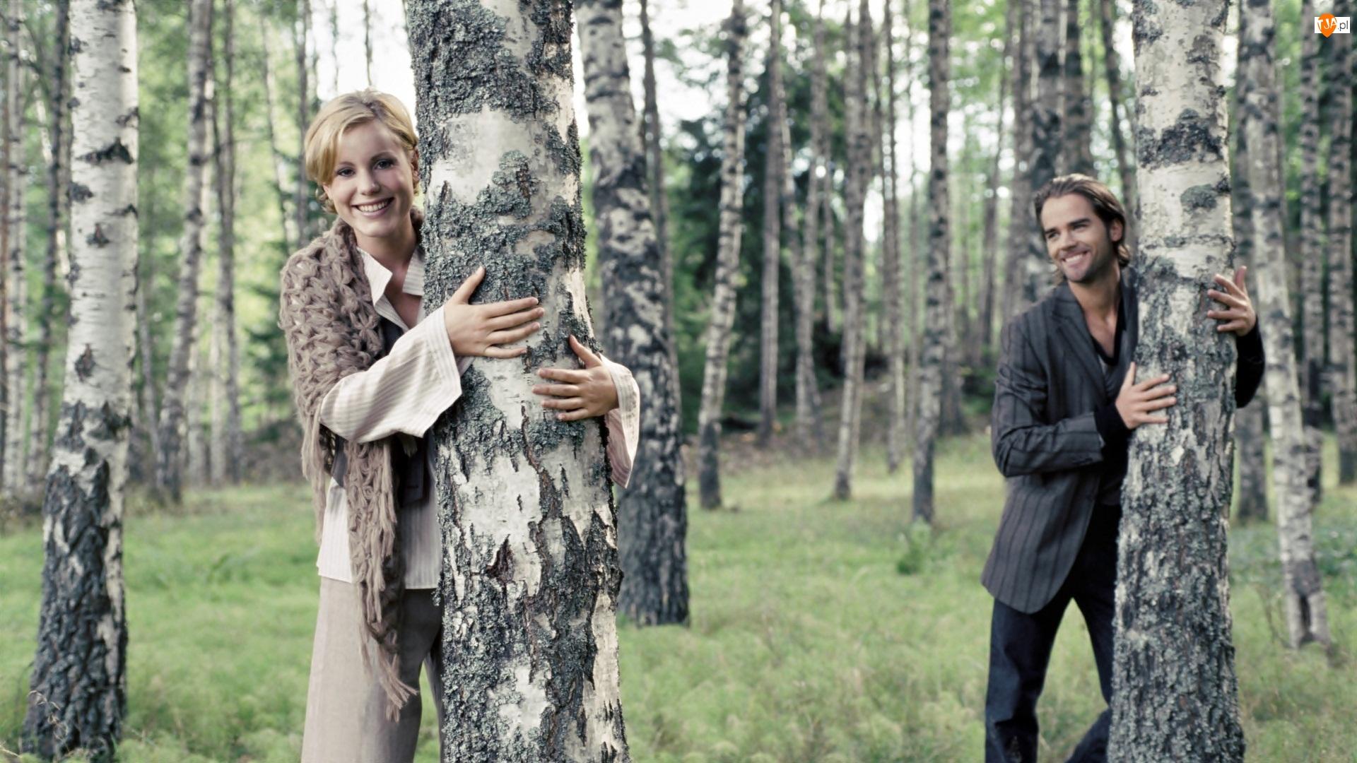 Drzewa, Miłość, Mężczyzna, Para, Brzozy, Kobieta, Las