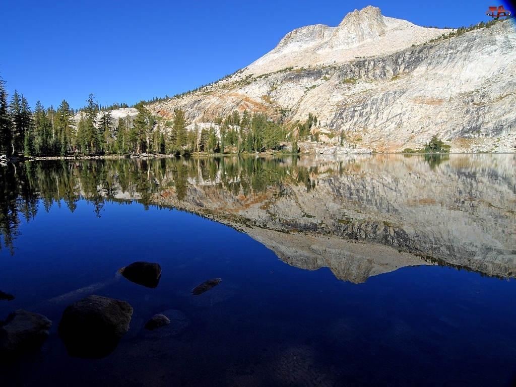 Park Narodowy Yosemite, Góry, Stany Zjednoczone, Drzewa, Stan Kalifornia, Jezioro Yosemite Lake