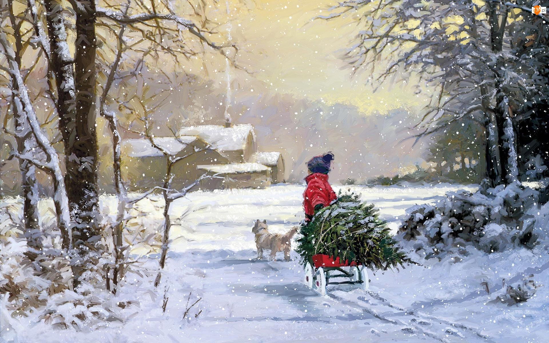 Dziecko, Choinka, Zima, Piesek, Śnieg, Sanki