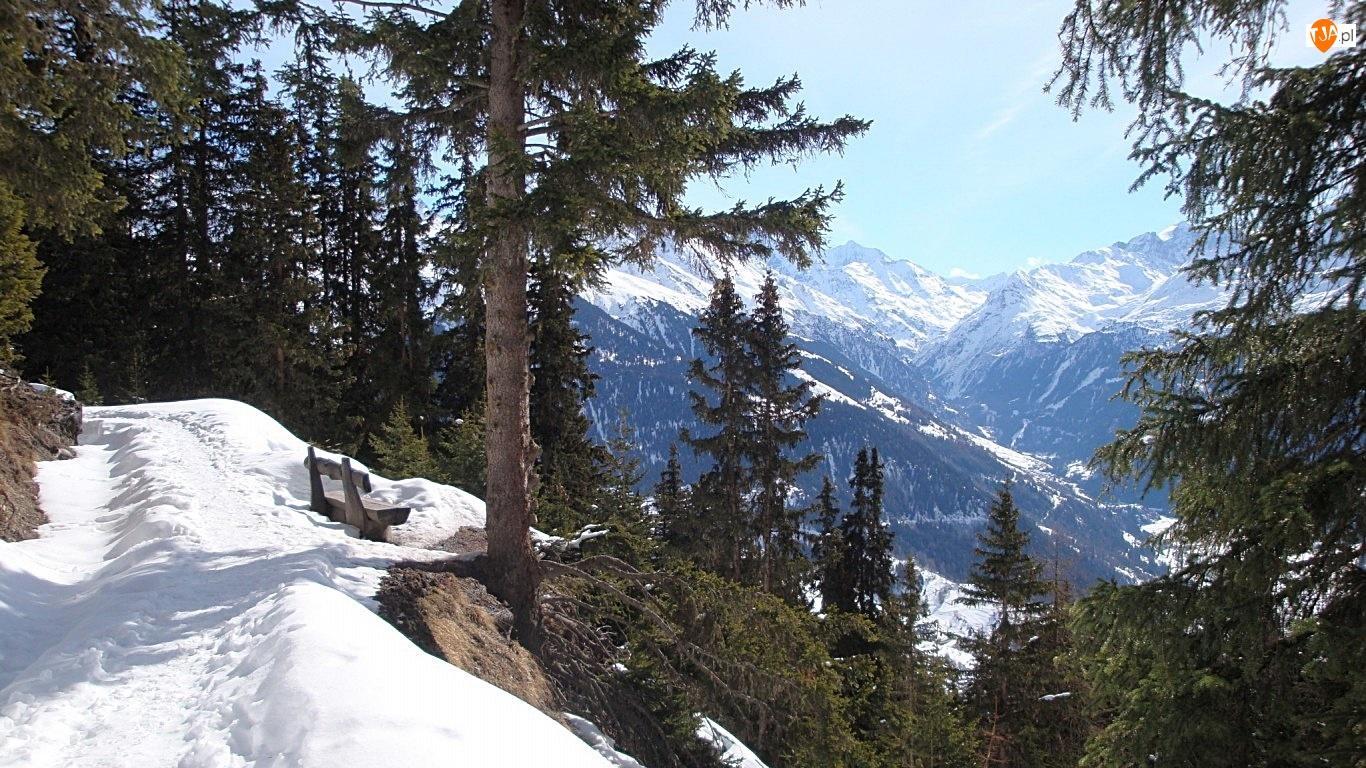 Zima, Ławka, Góry, Las