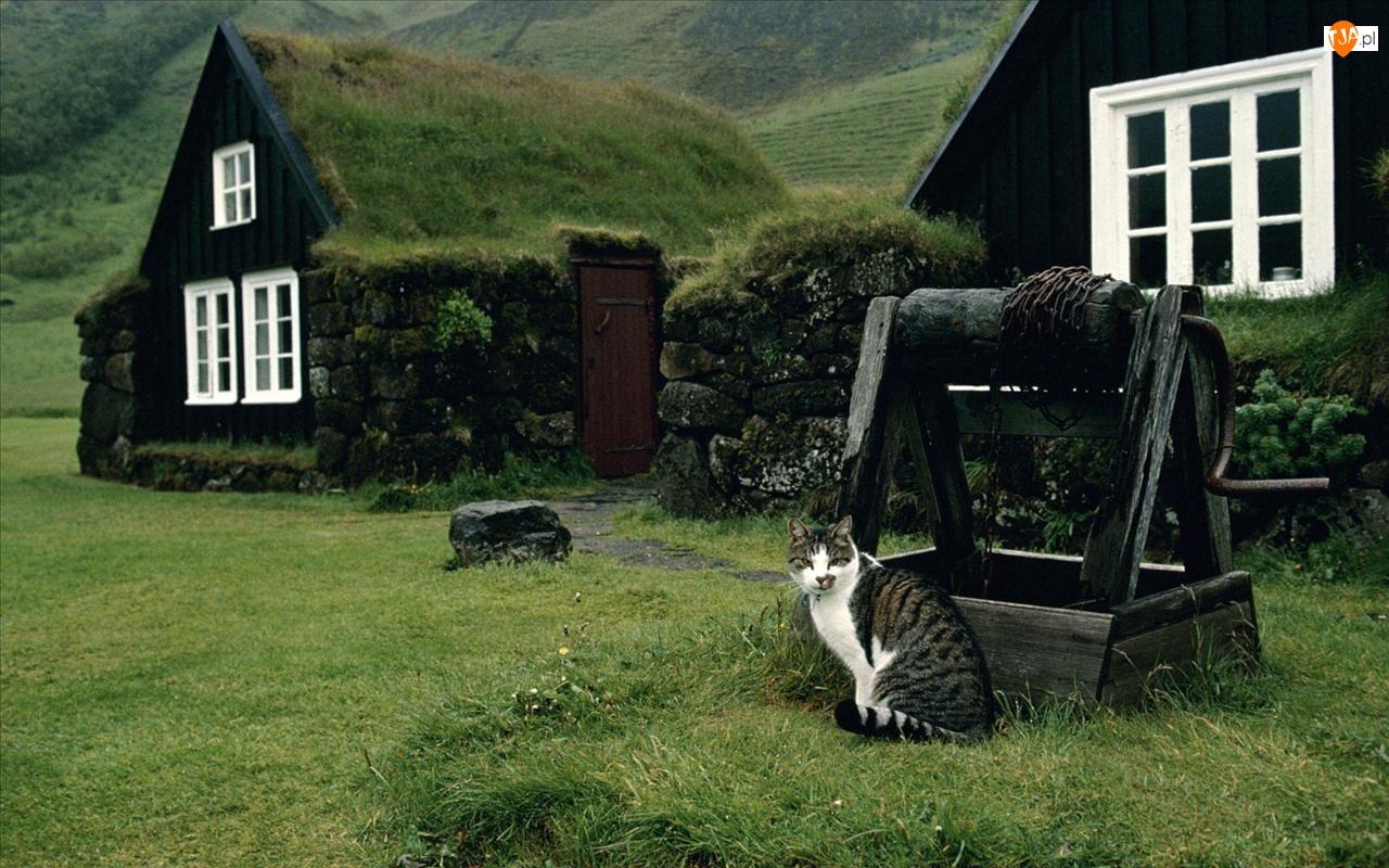 Wiejskie, Kot, Domy, Studnia