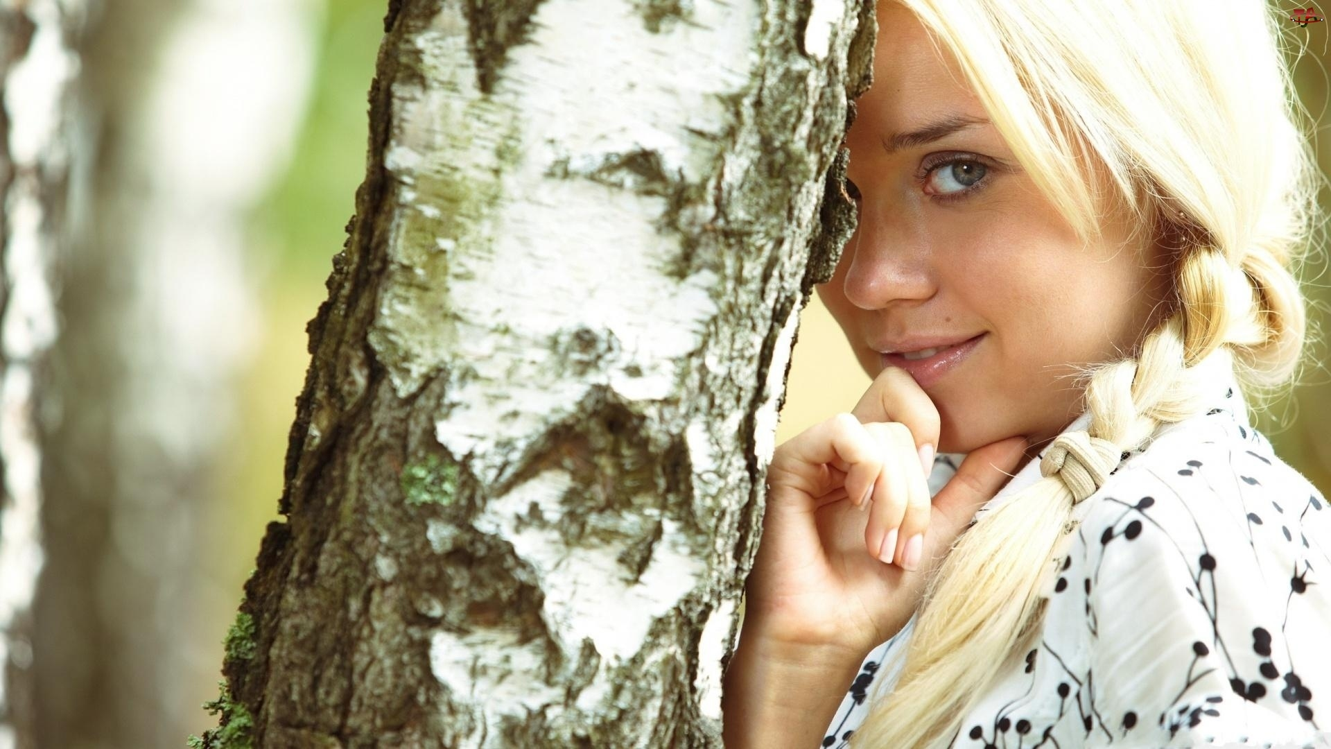 Drzewo, Warkocze, Brzoza, Dziewczyna