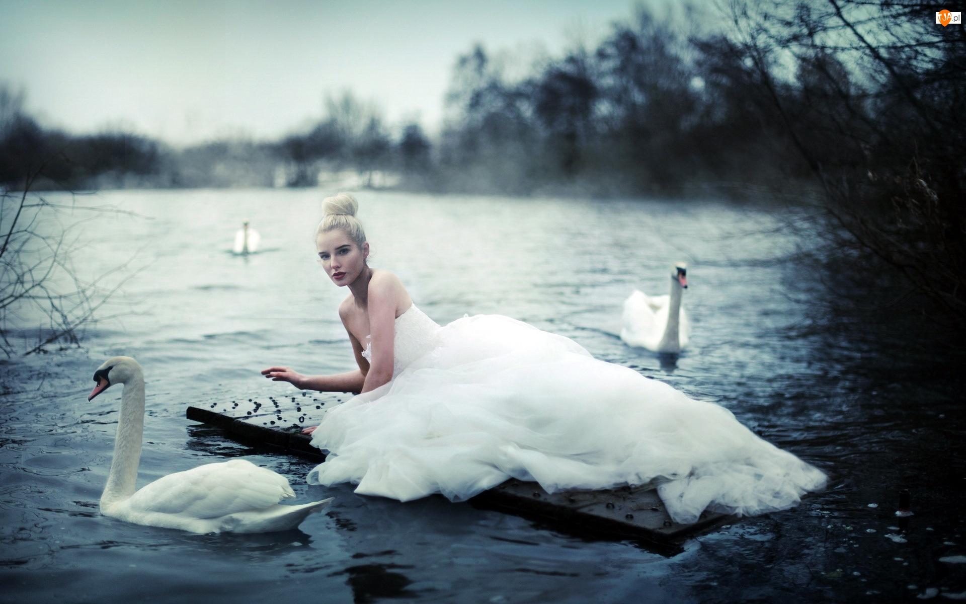Łabędzie, Kobieta, Jezioro