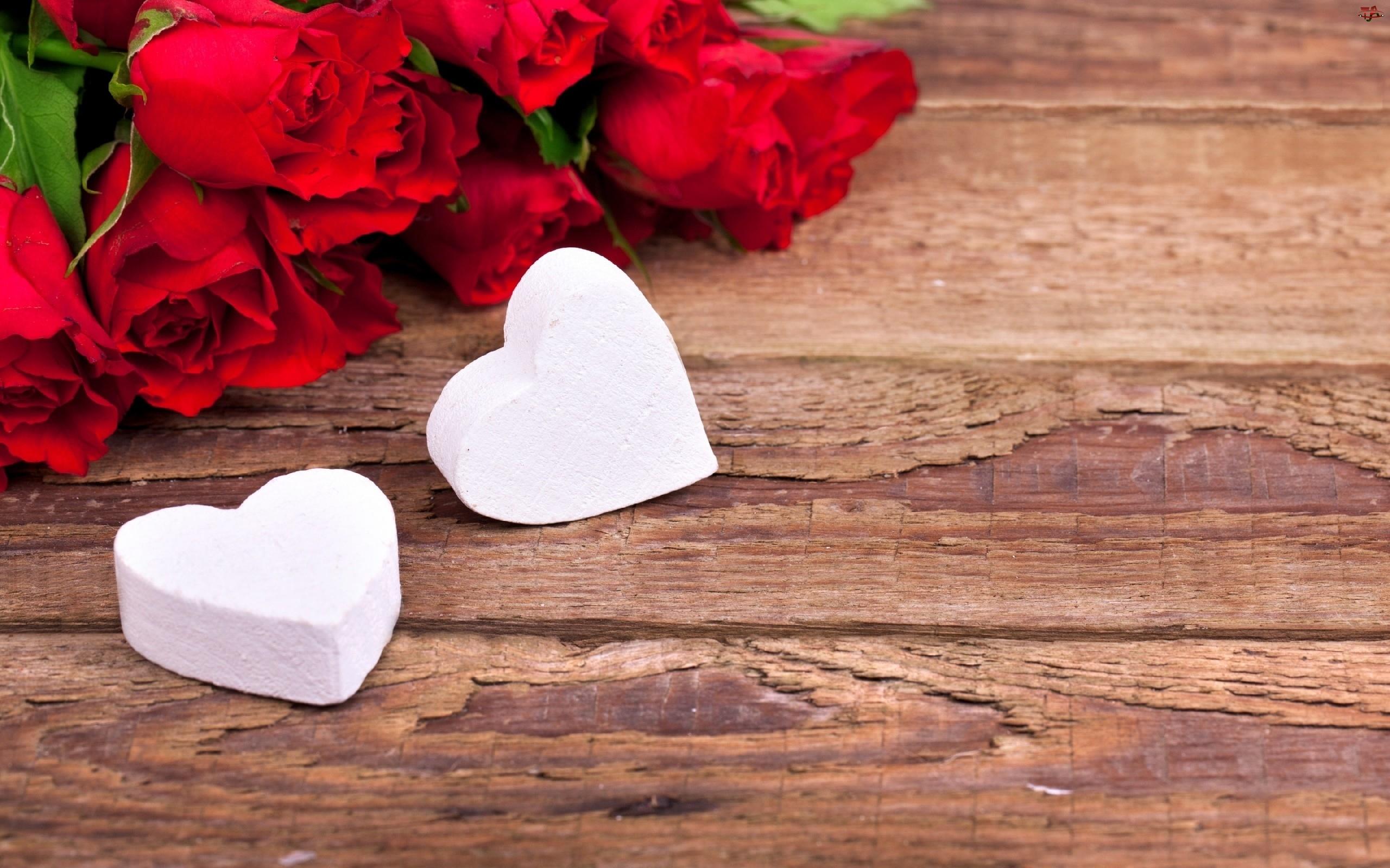 Róże, Walentynki, Serca