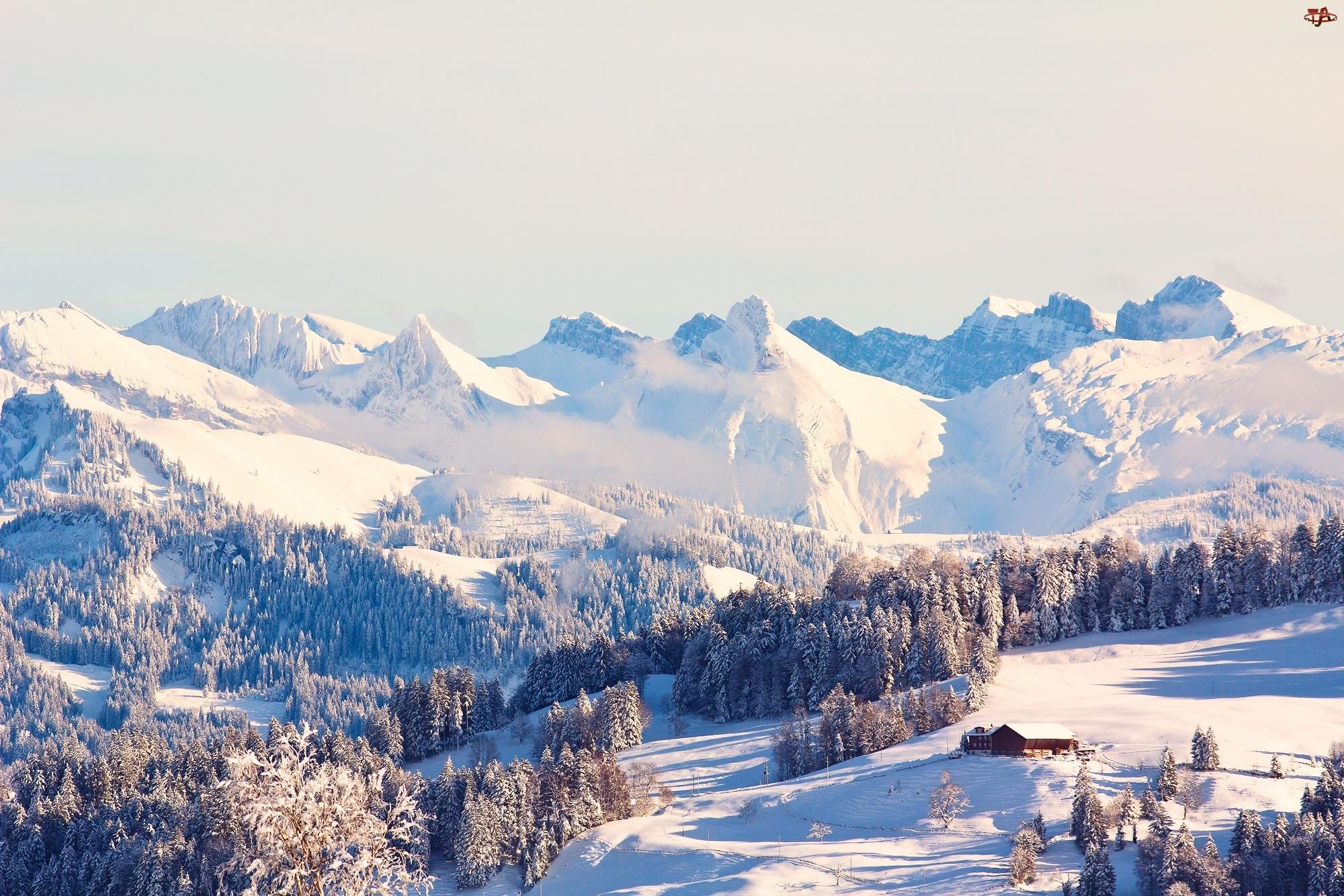 Góry, Zima, Las, Domek