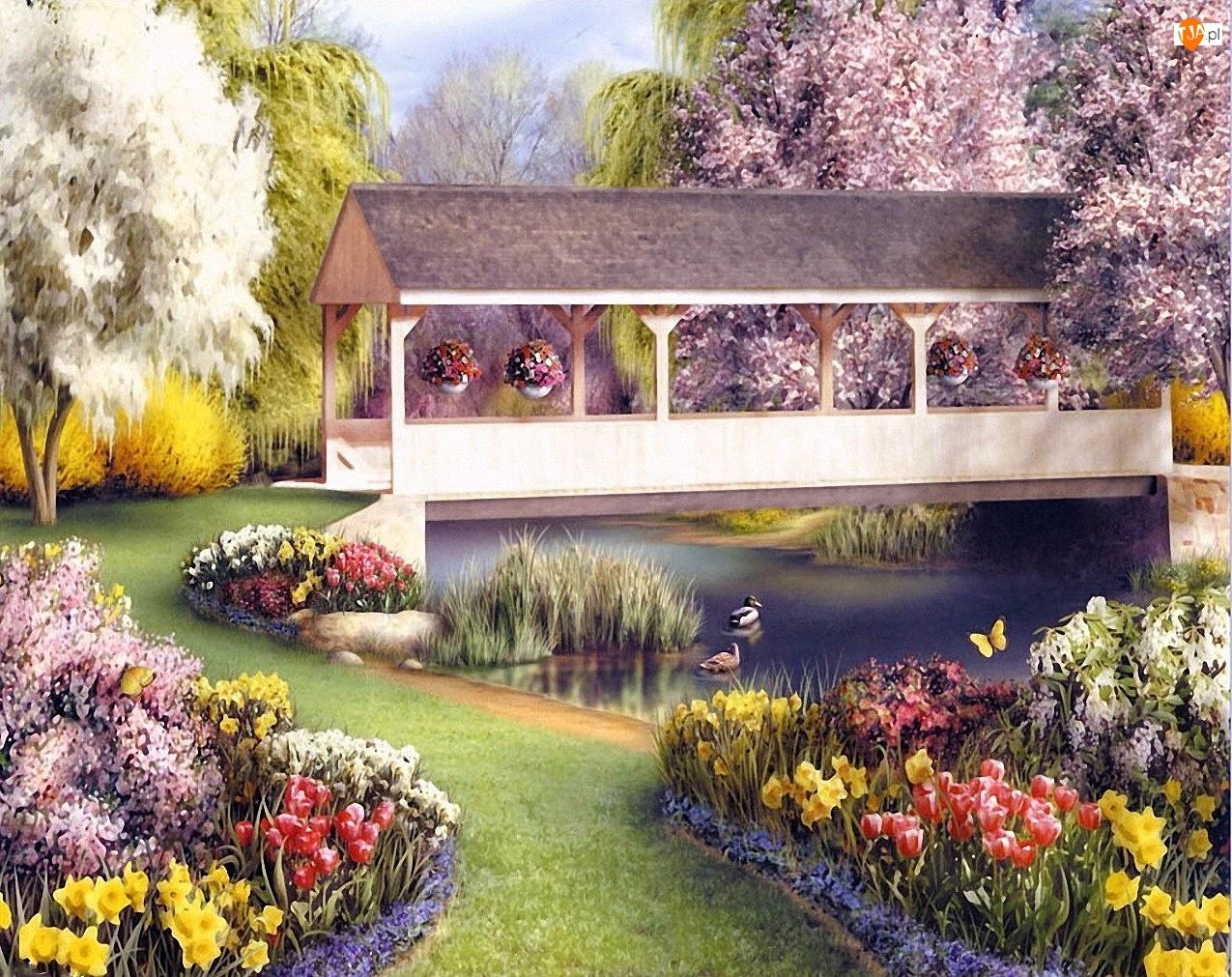 Kwiaty, Ogród, Most, Kryty, Rzeka