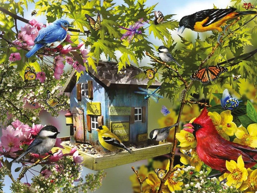 Magnolia, Malarstwo, Ptaki, Domek