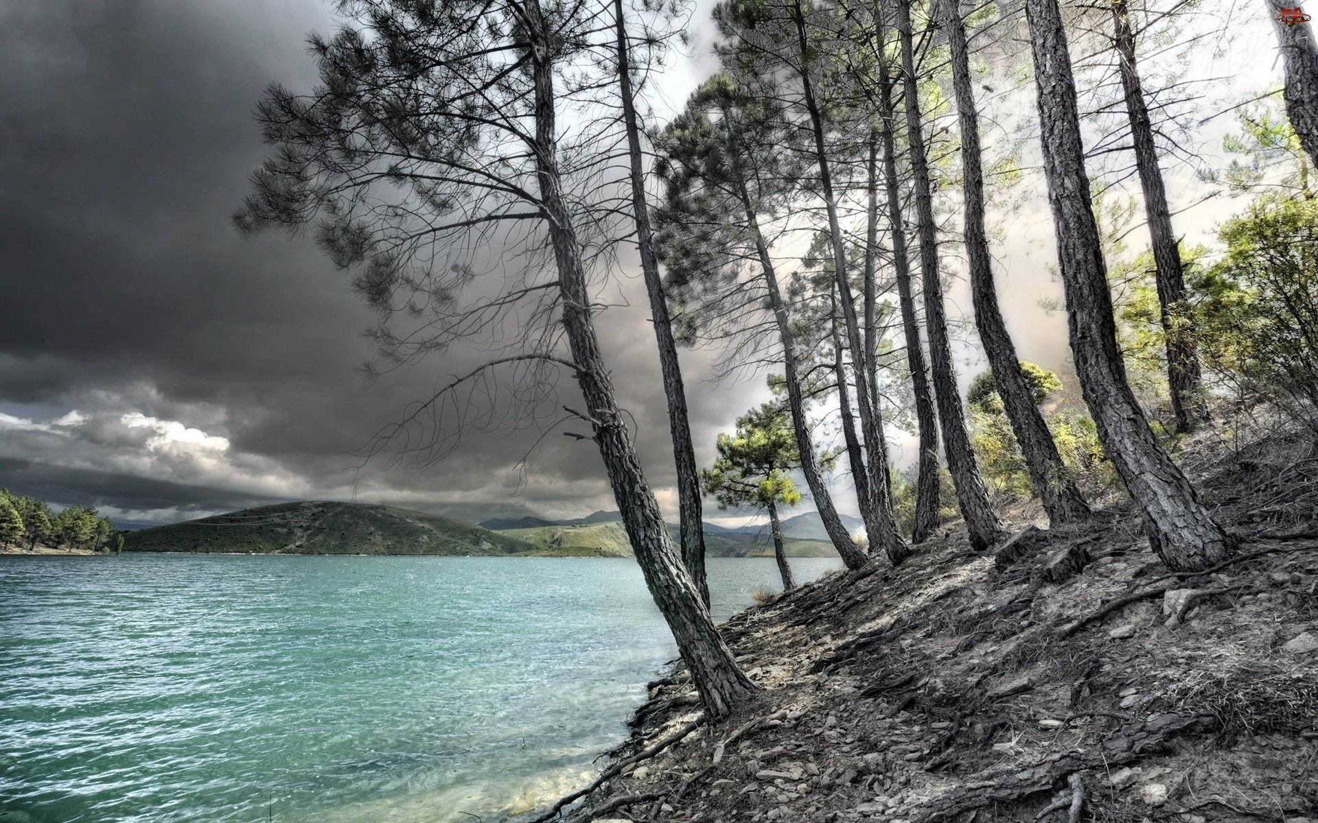 Jezioro, Skarpa, Chmury, Sosny