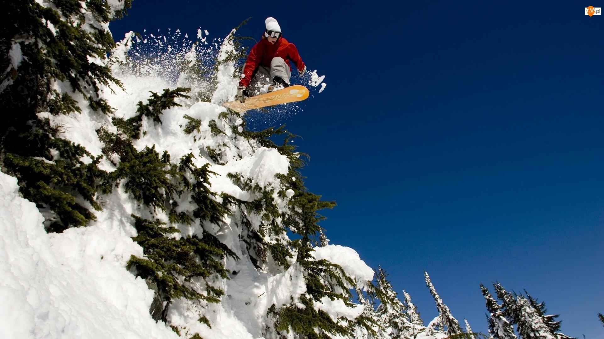 Choinki, Snowboardzista, Śnieg