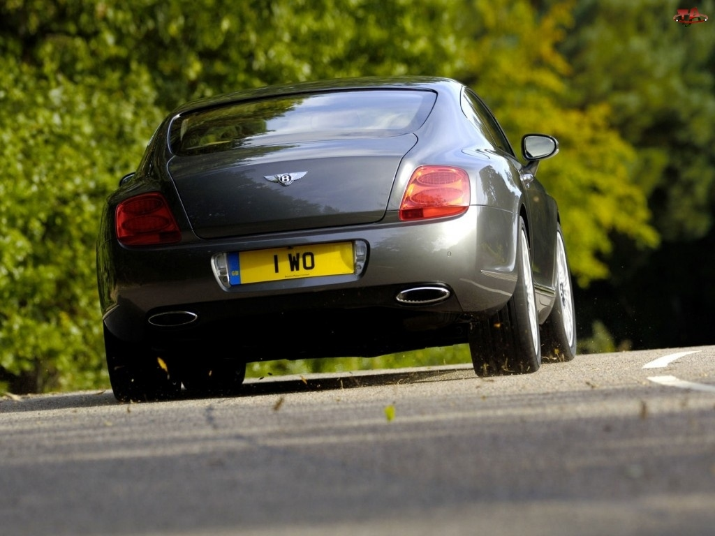 Opon, Bentley Continental GT, Profil