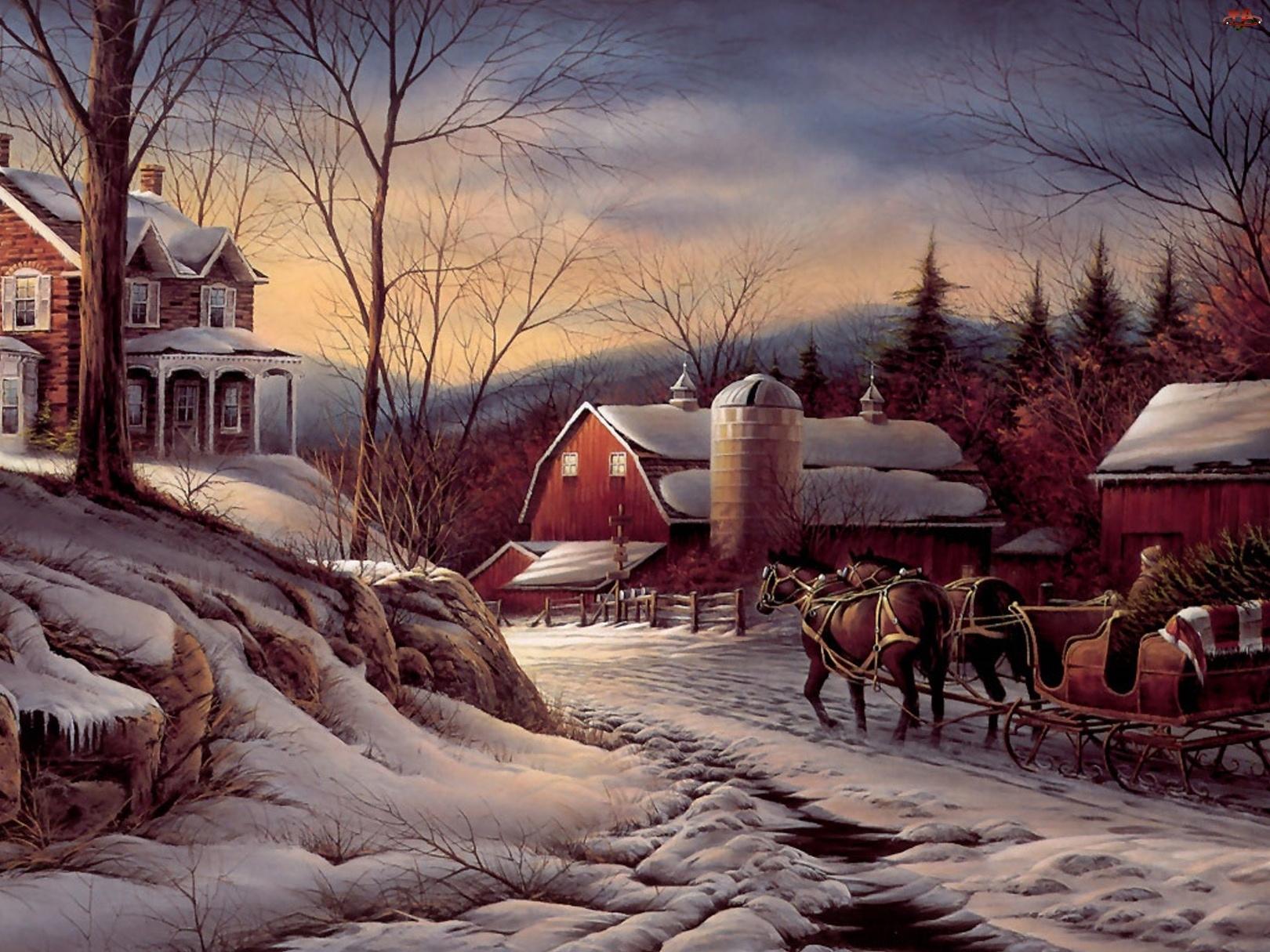 Zima, Domy, Sanie