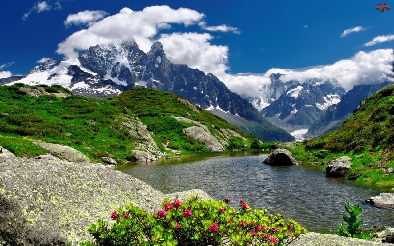 Góry, Rzeka, Kwiatki