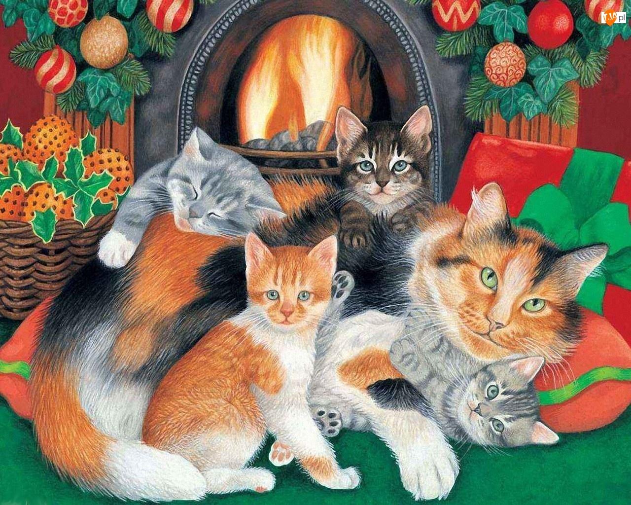 Koty, Narodzenie, Kominek, Boże