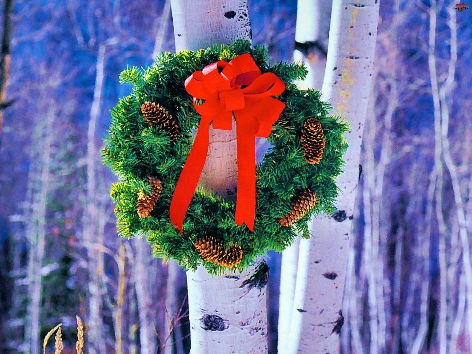 Brzozy, Wieniec, Bożonarodzeniowy