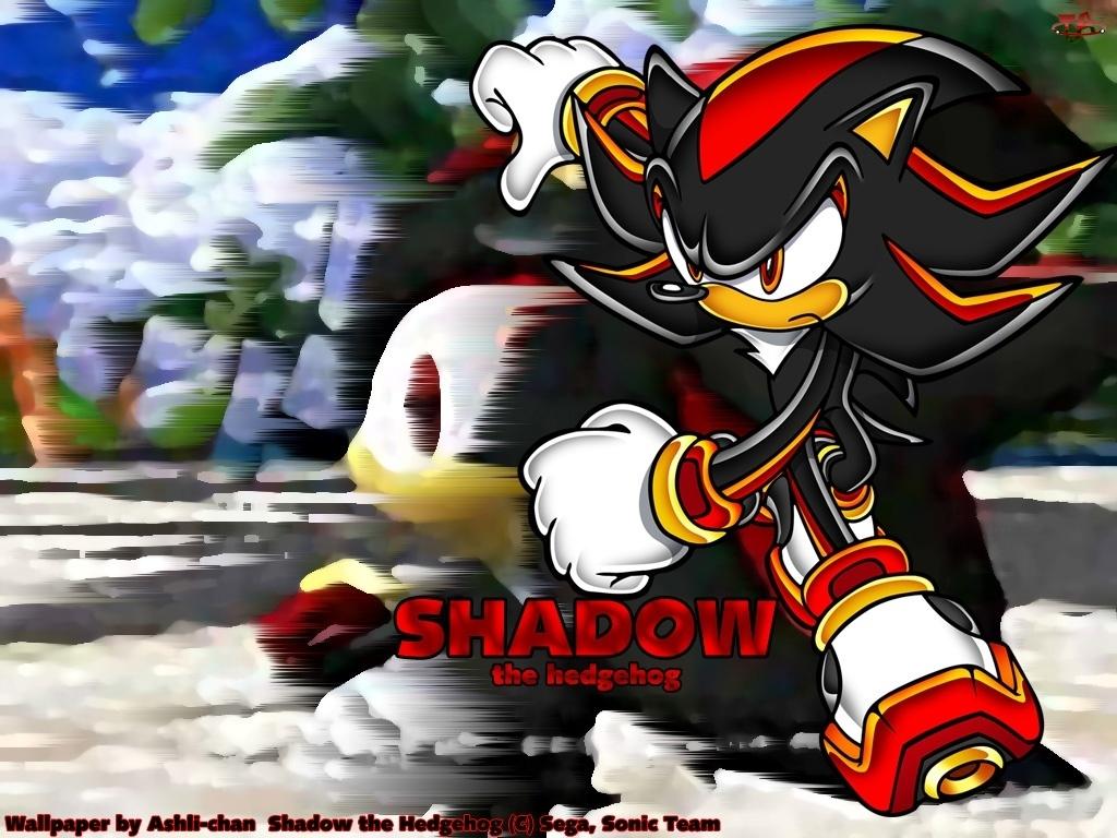 rysunek, Sonic Heroes, lis