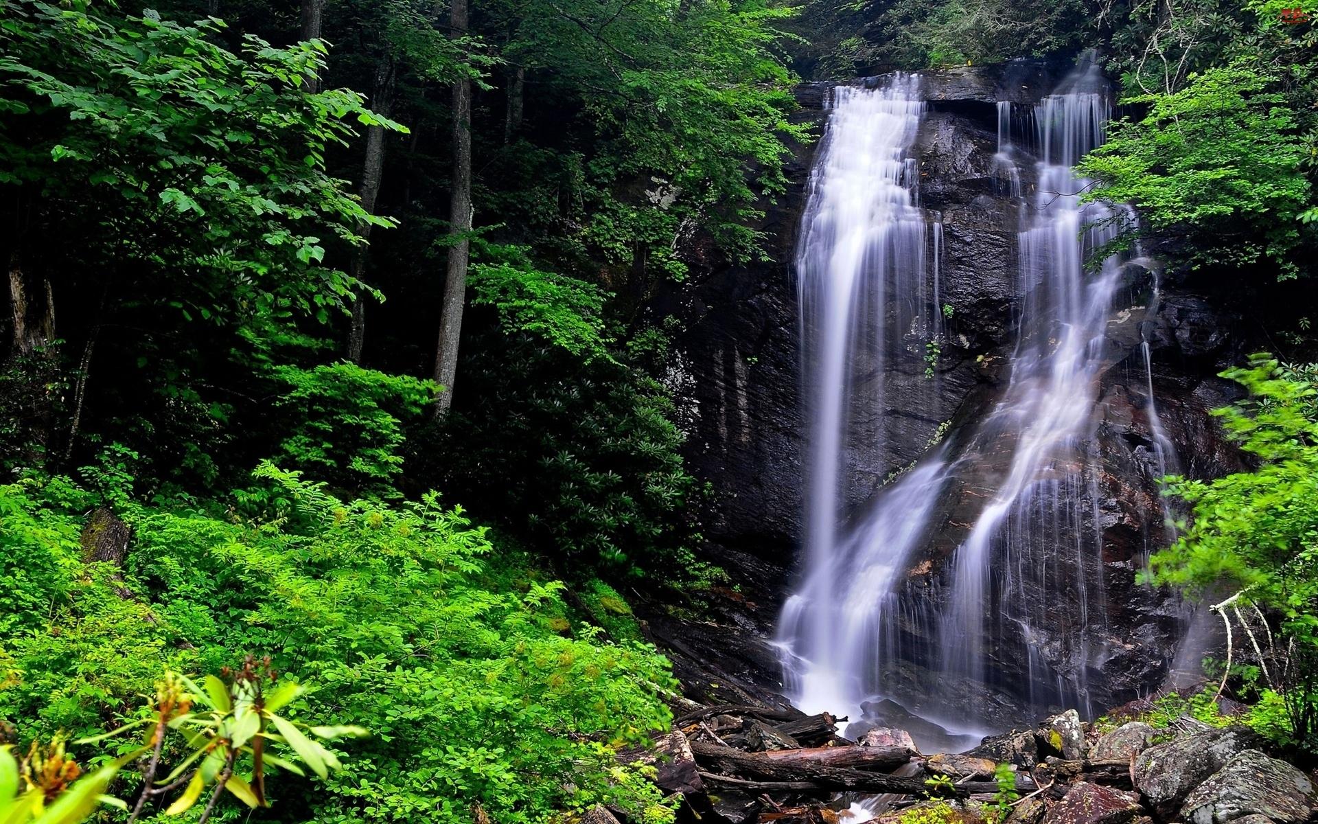 Wodospad, Zieleń