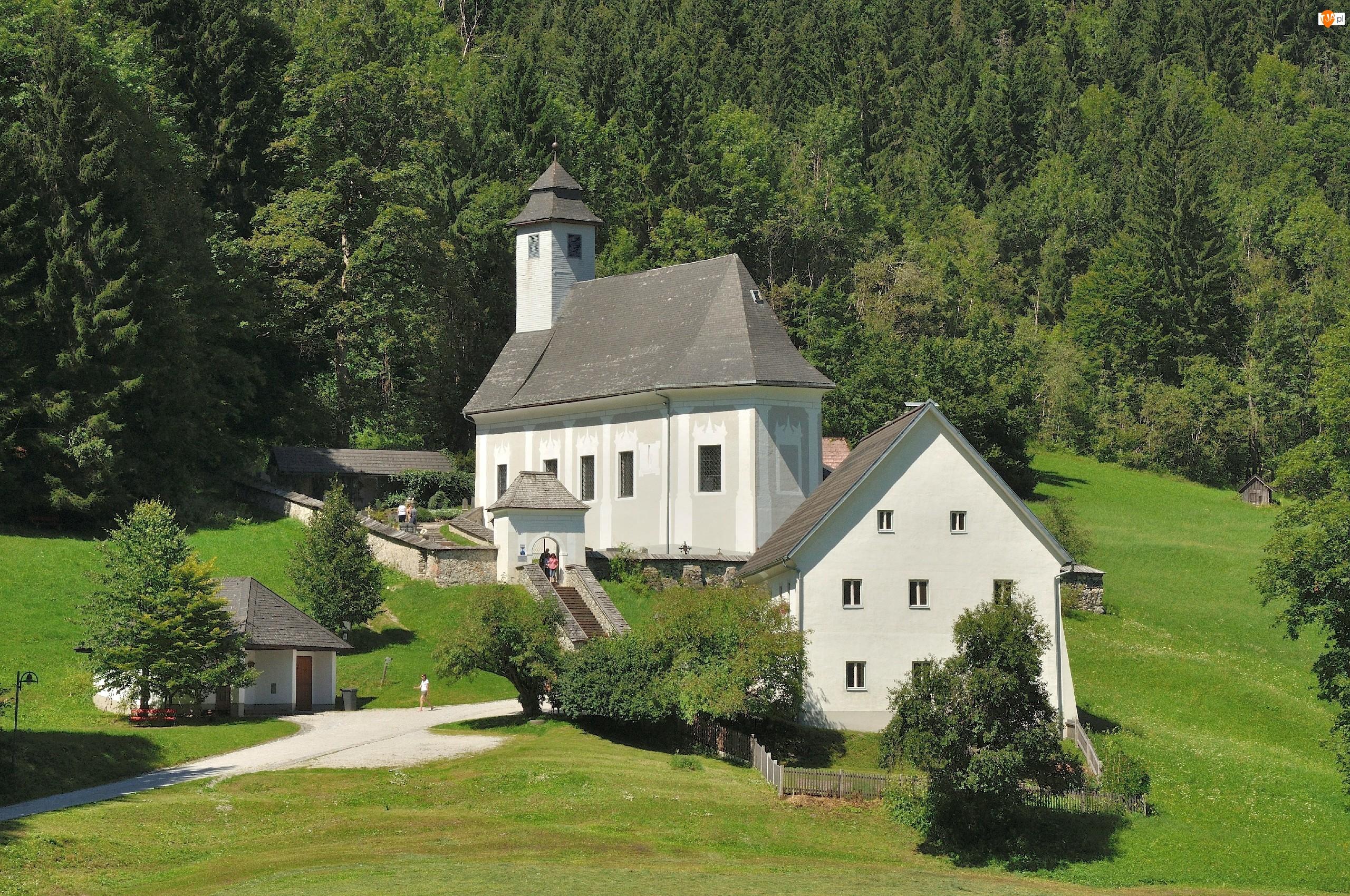 Austria, Kościółek, Drzewa, Trawa, Johnsbach