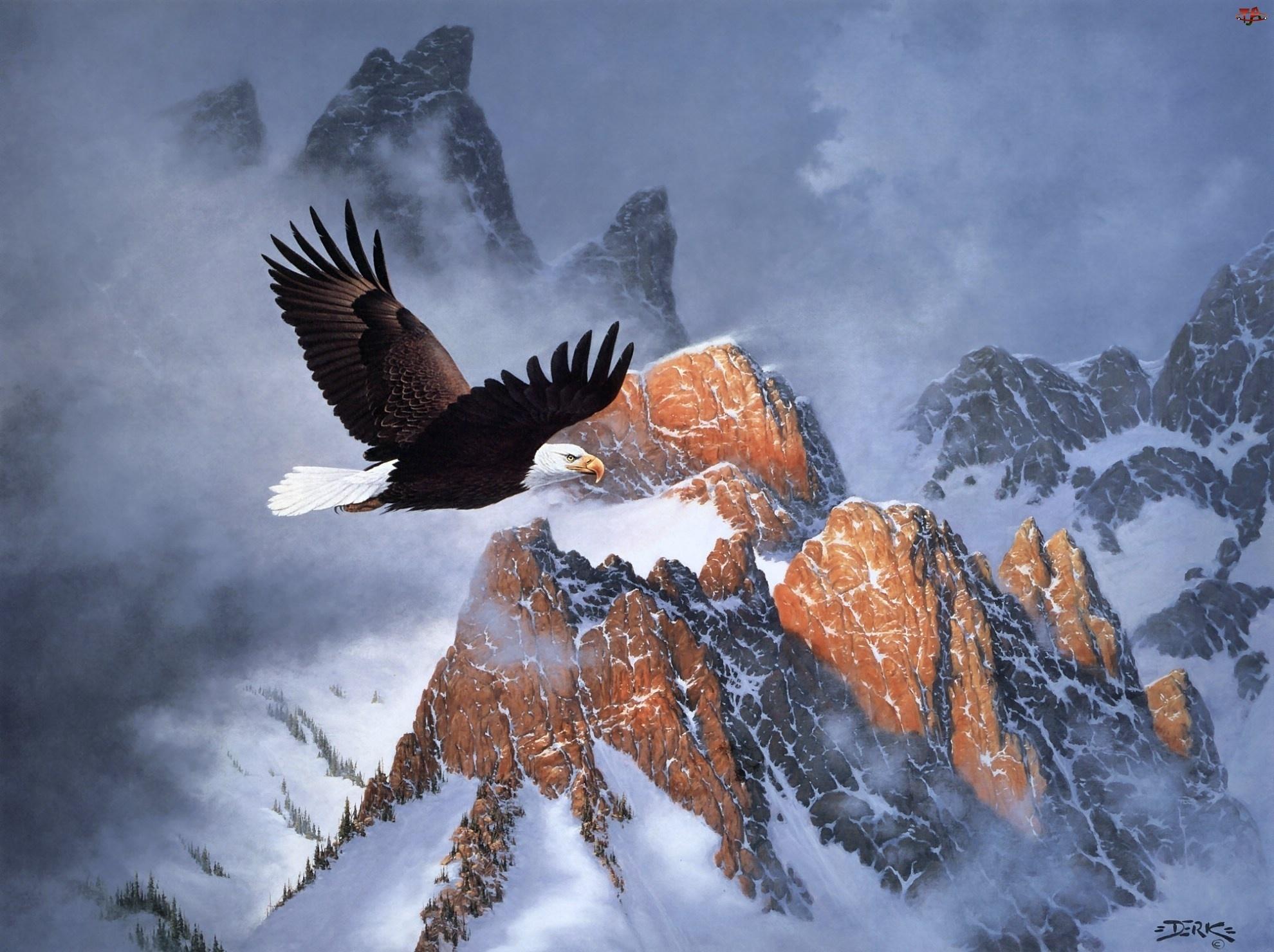 Malarstwo, Bielik amerykański, Góry, Zima