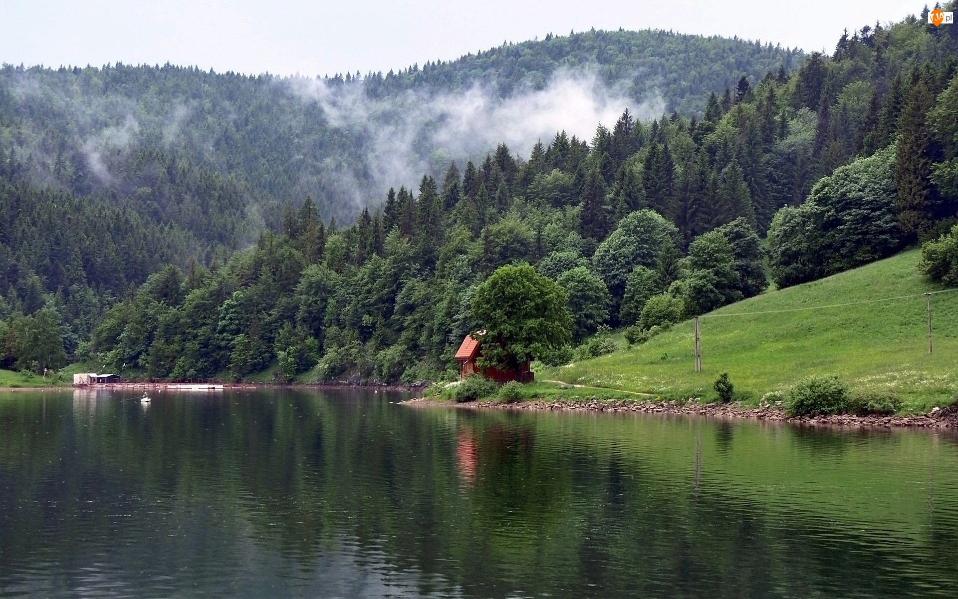 Dom, Góry, Rzeka, Karpaty, Lasy