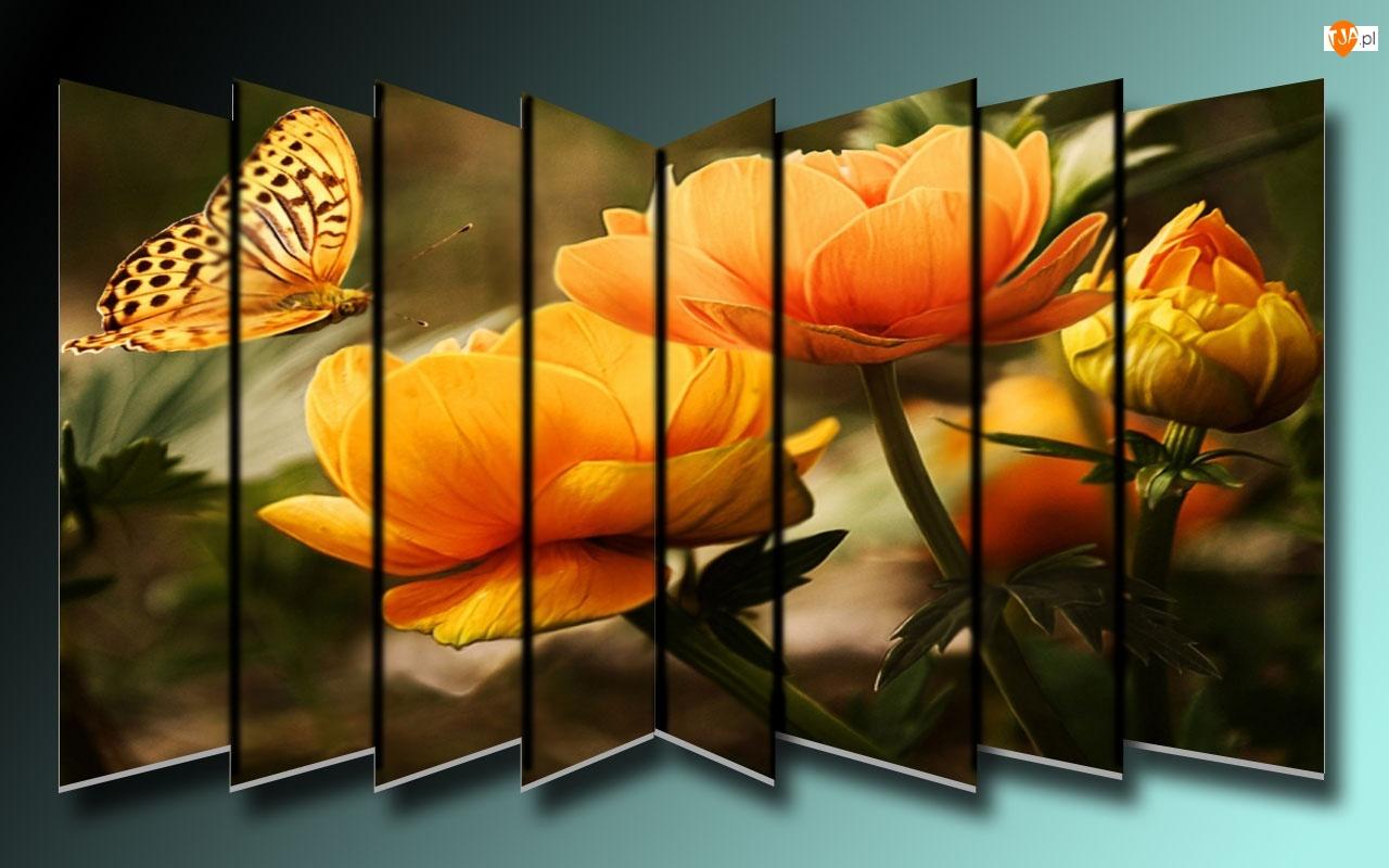 Grafika, Kwiatki, Motyl
