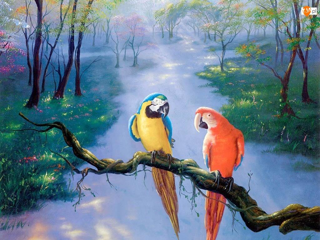 Malarstwo, Dwie, Papugi, Kolorowe, Ara