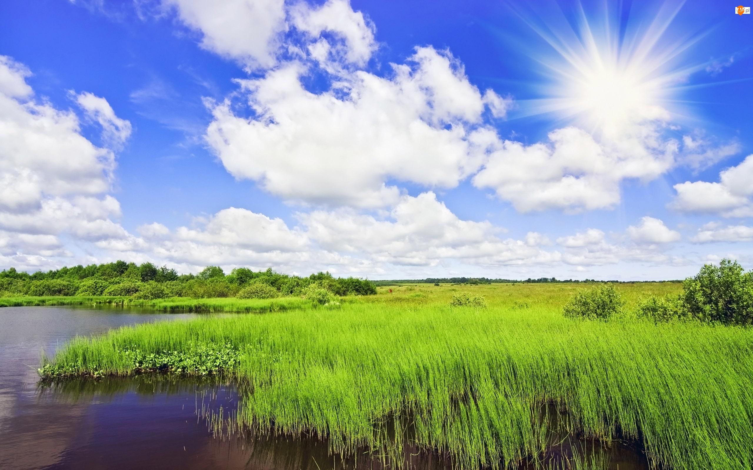 Trawa, Promienie, Rzeka, Słońca, Łąka, Chmury