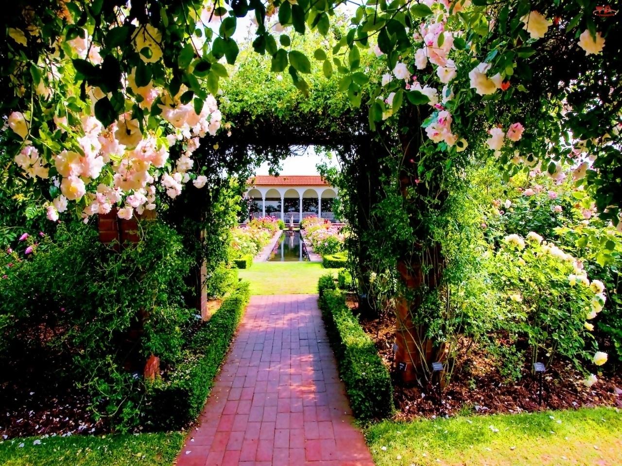 Ogród, Kwiatowy, Pałac, Tunel, Sadzawka, Alejka