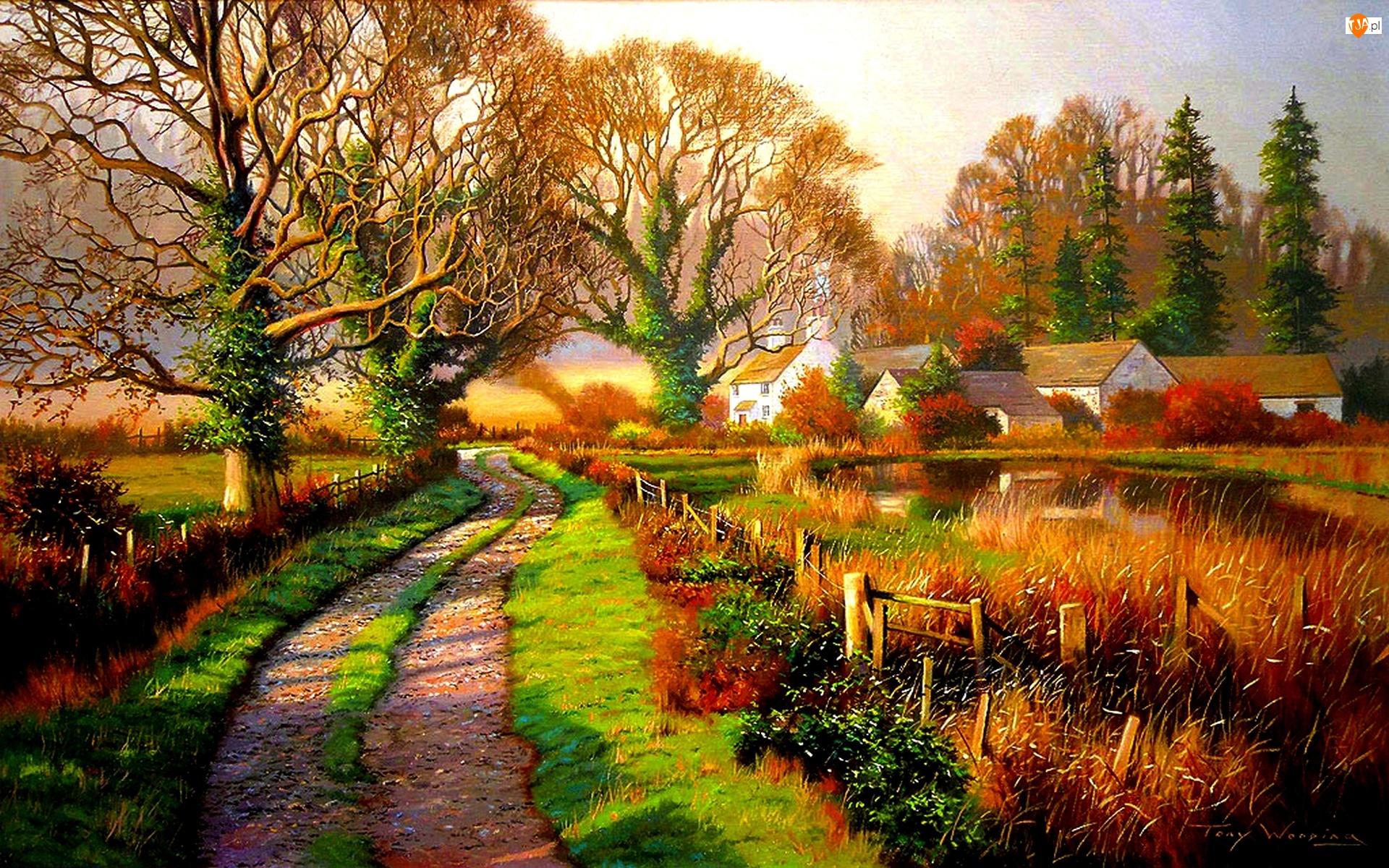 Domy, Staw, Droga, Jesień, Drzewa, Wioska