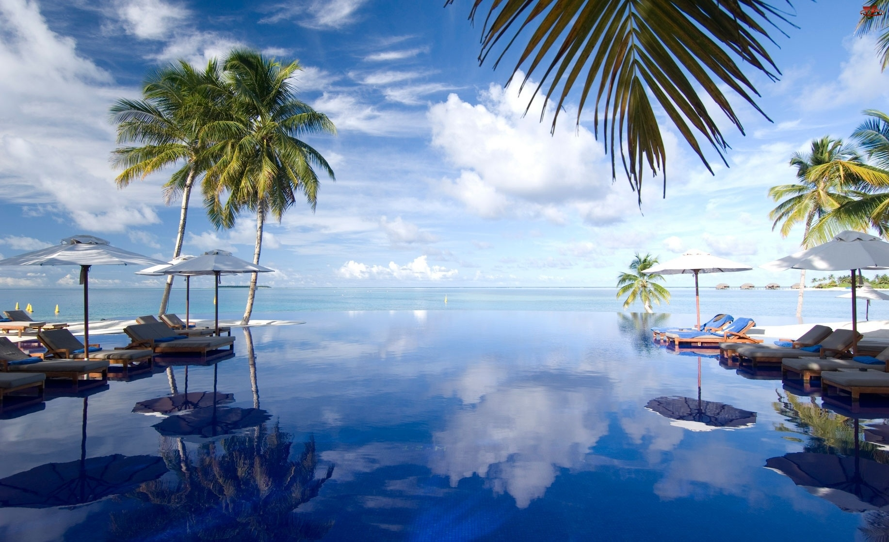 Morze, Malediwy, Parasole, Palmy