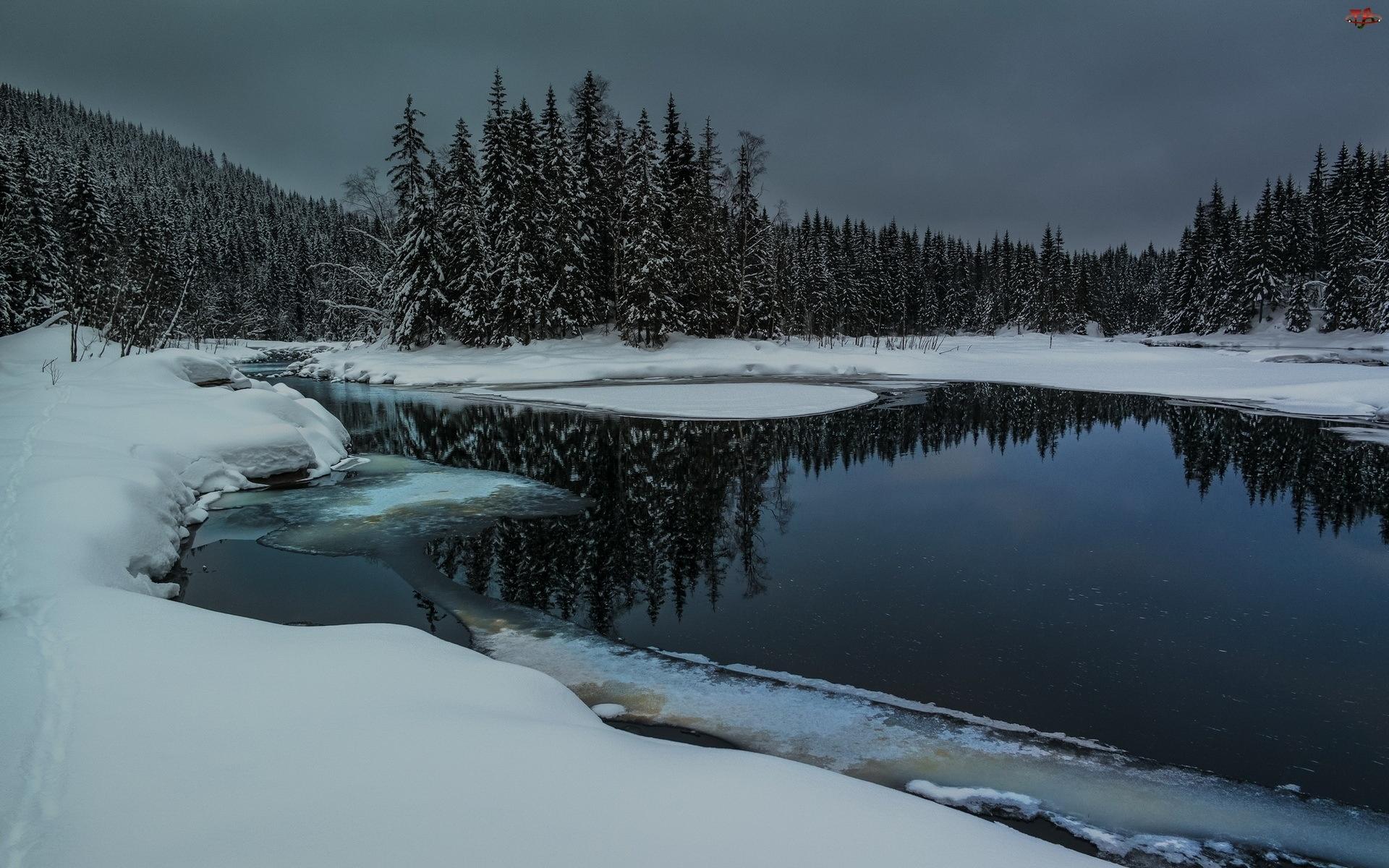 Lasy, Zmierzch, Rzeka, Śnieg