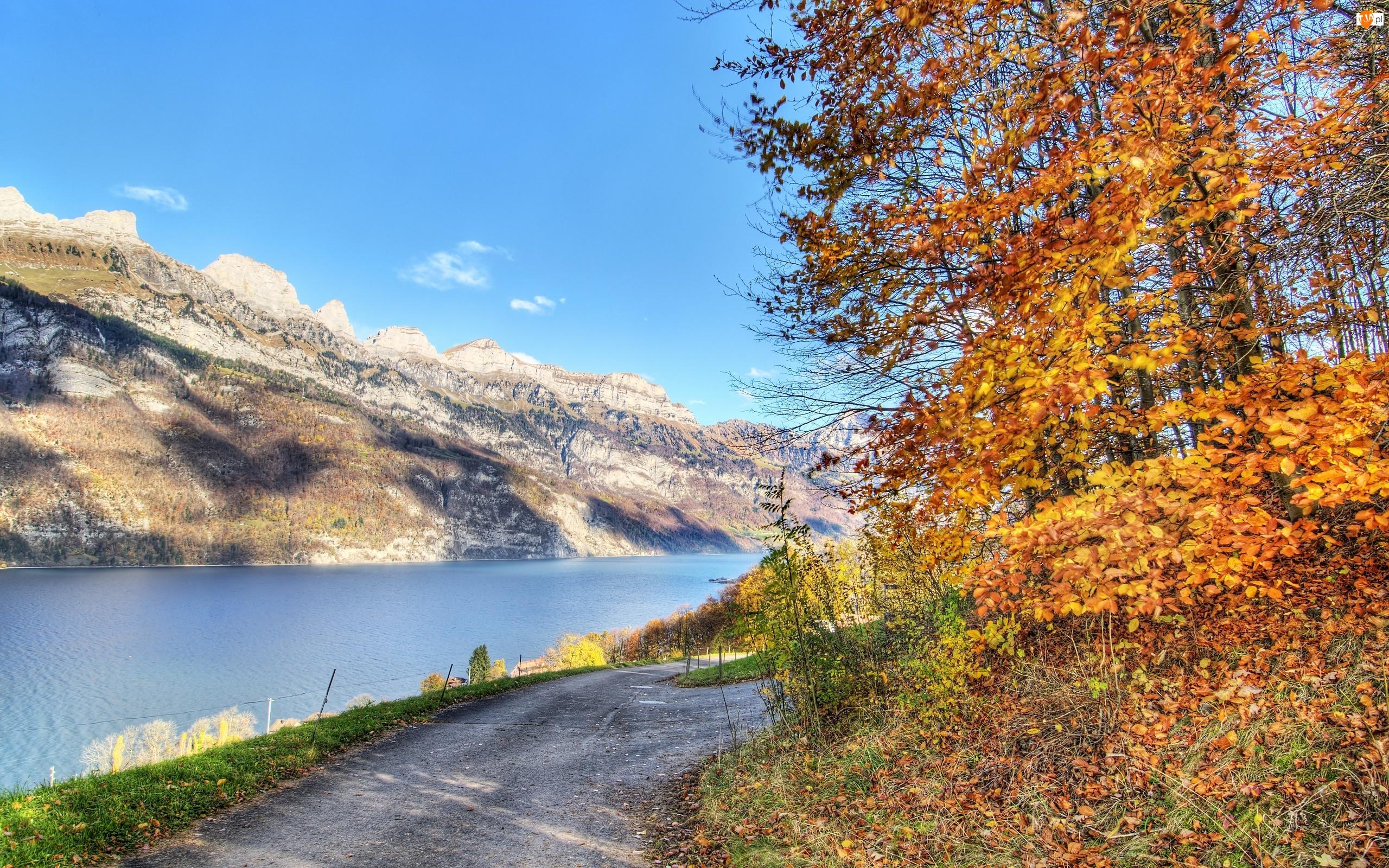 Liście, Góry, Droga, Rzeka, Jesienne