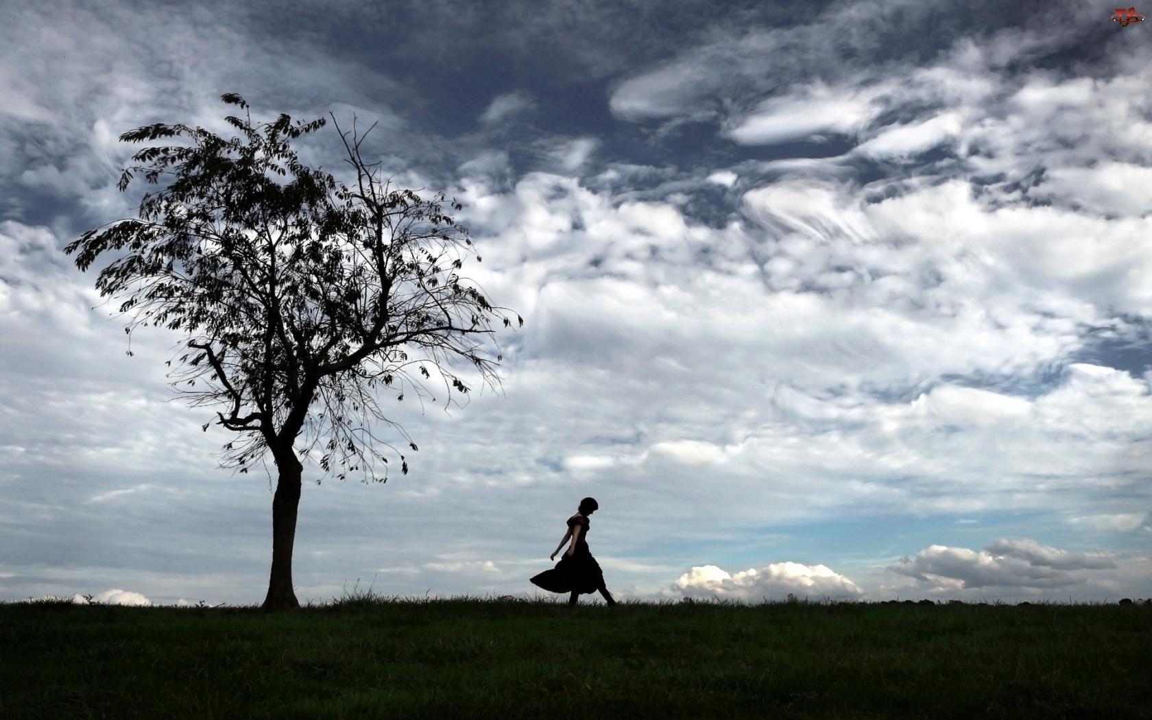 Łąka, Chmury, Kobieta, Drzewo