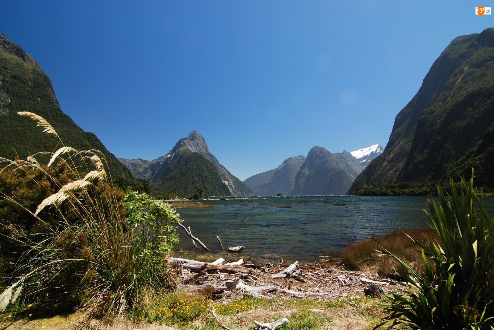 Jezioro, Nowa Zelandia, Góry, Milford Sound