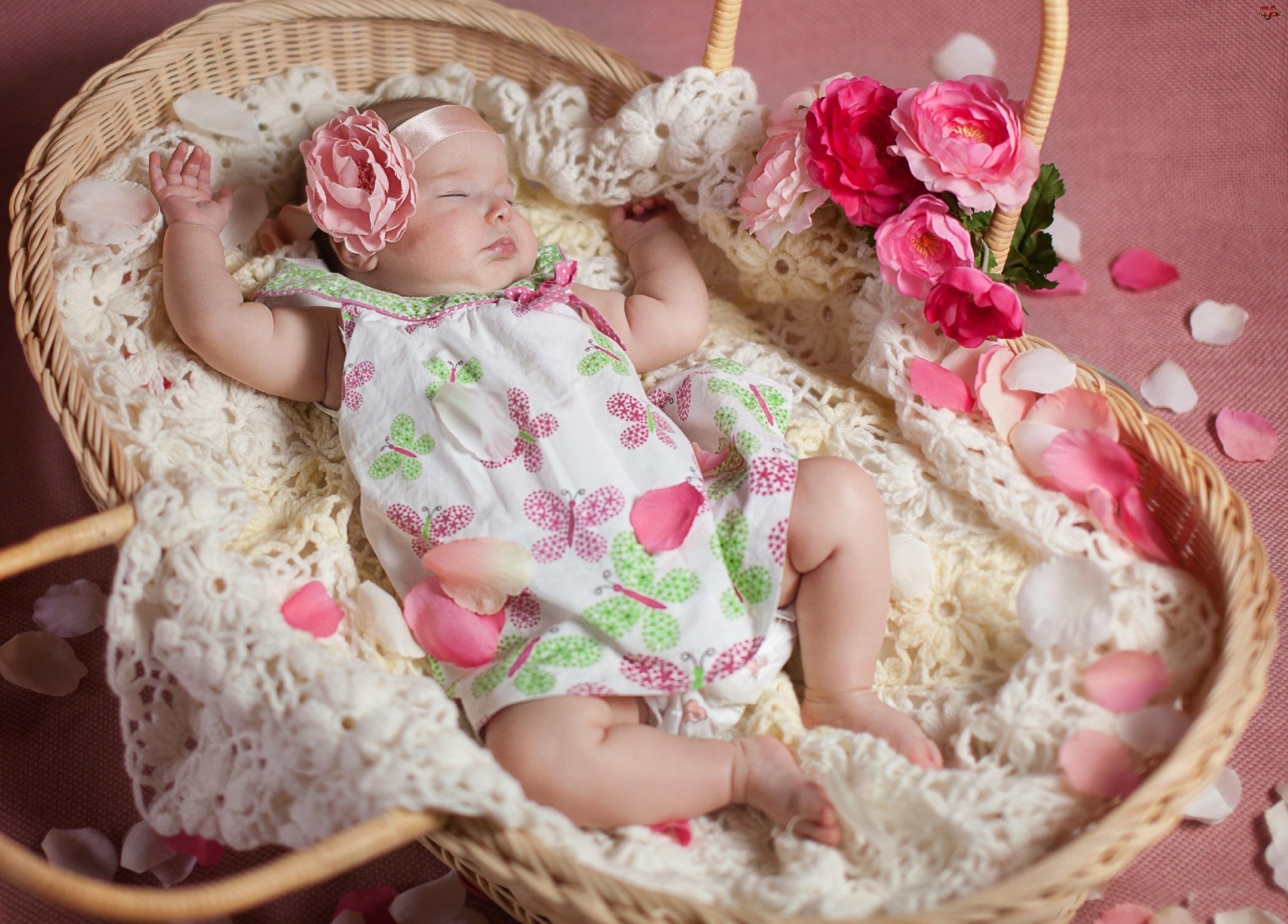 Śpiąca, Kwiaty, Mała, Dziewczynka