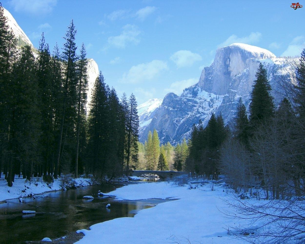 Rzeka, Zalesione, Stan Kalifornia, Góry, Stany Zjednoczone, Zima, Park Narodowy Yosemite, Brzegi