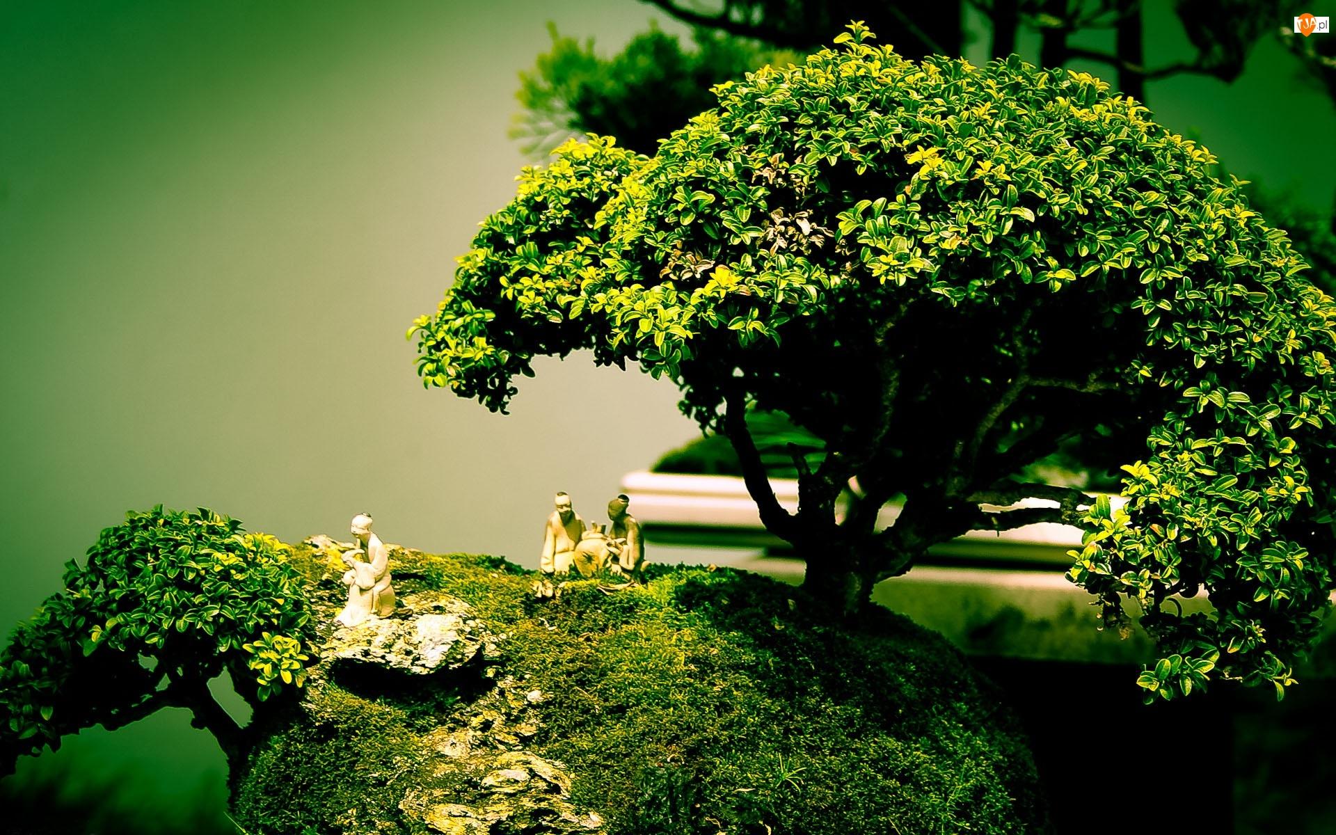 Drzewka, Porcelanowe, Bonsai, Figurki