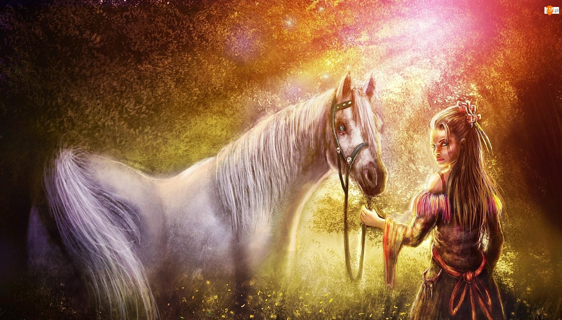 Łąka, Kobieta, Promienie, Koń, Słońca