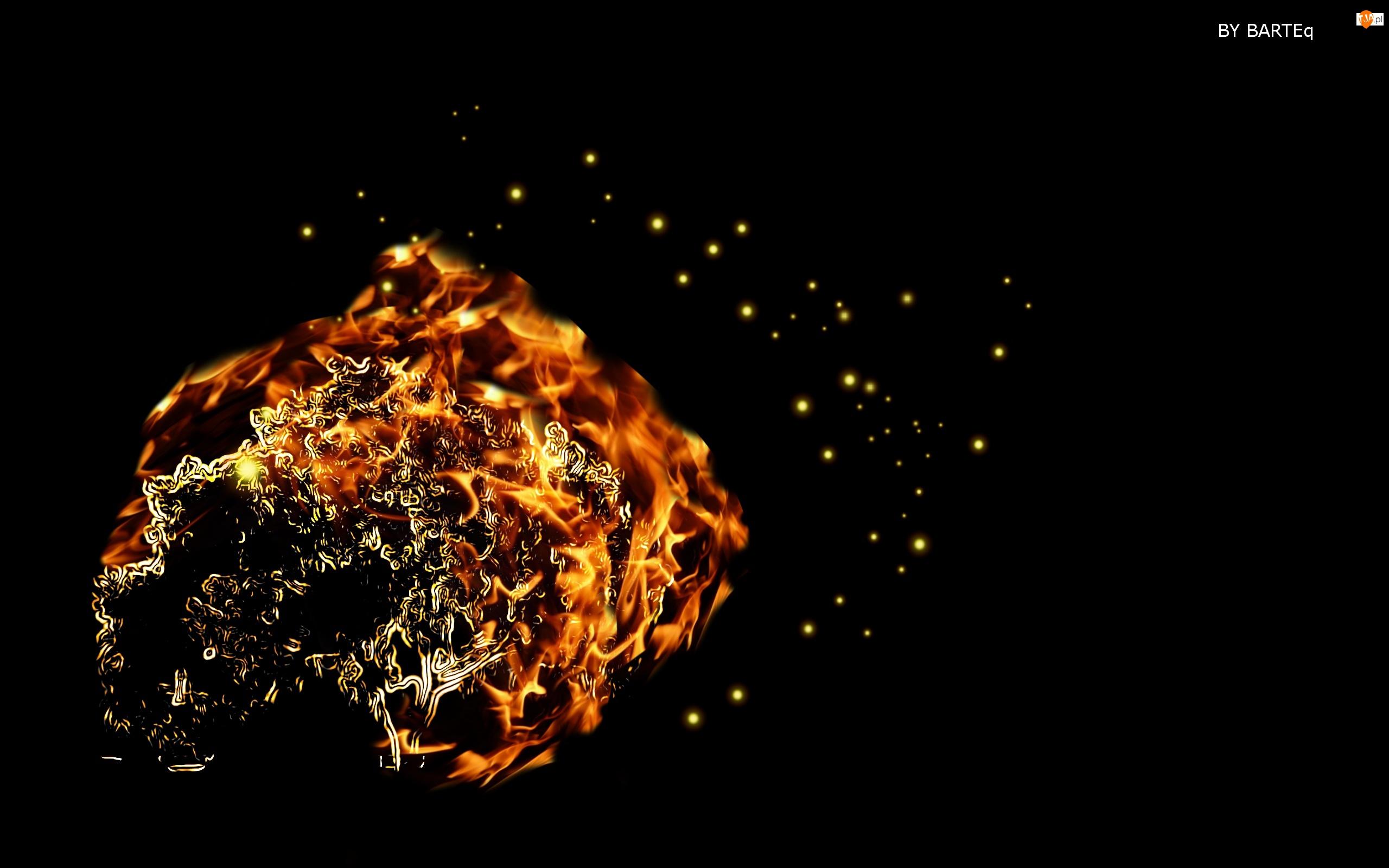 Płonące, Drzewo