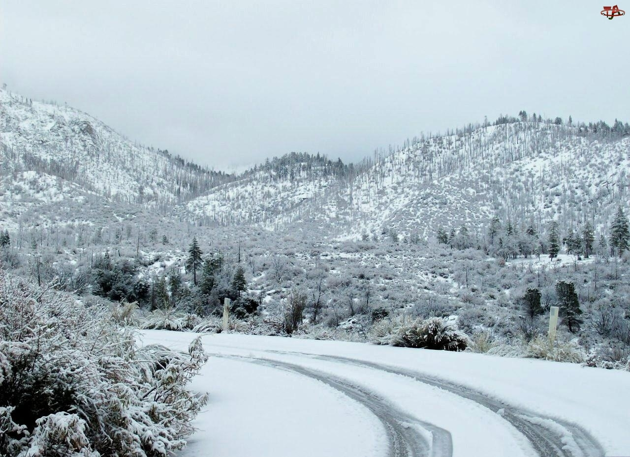 Zima, Droga, Góry, Lasy
