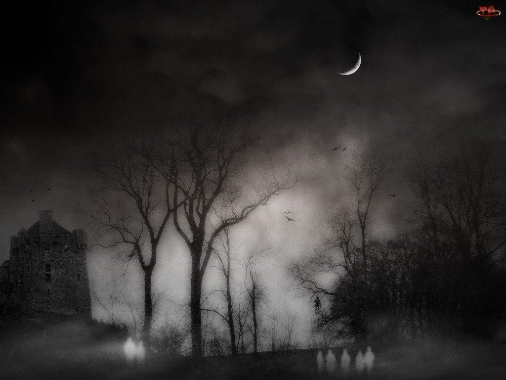 Halloween, ciemna noc
