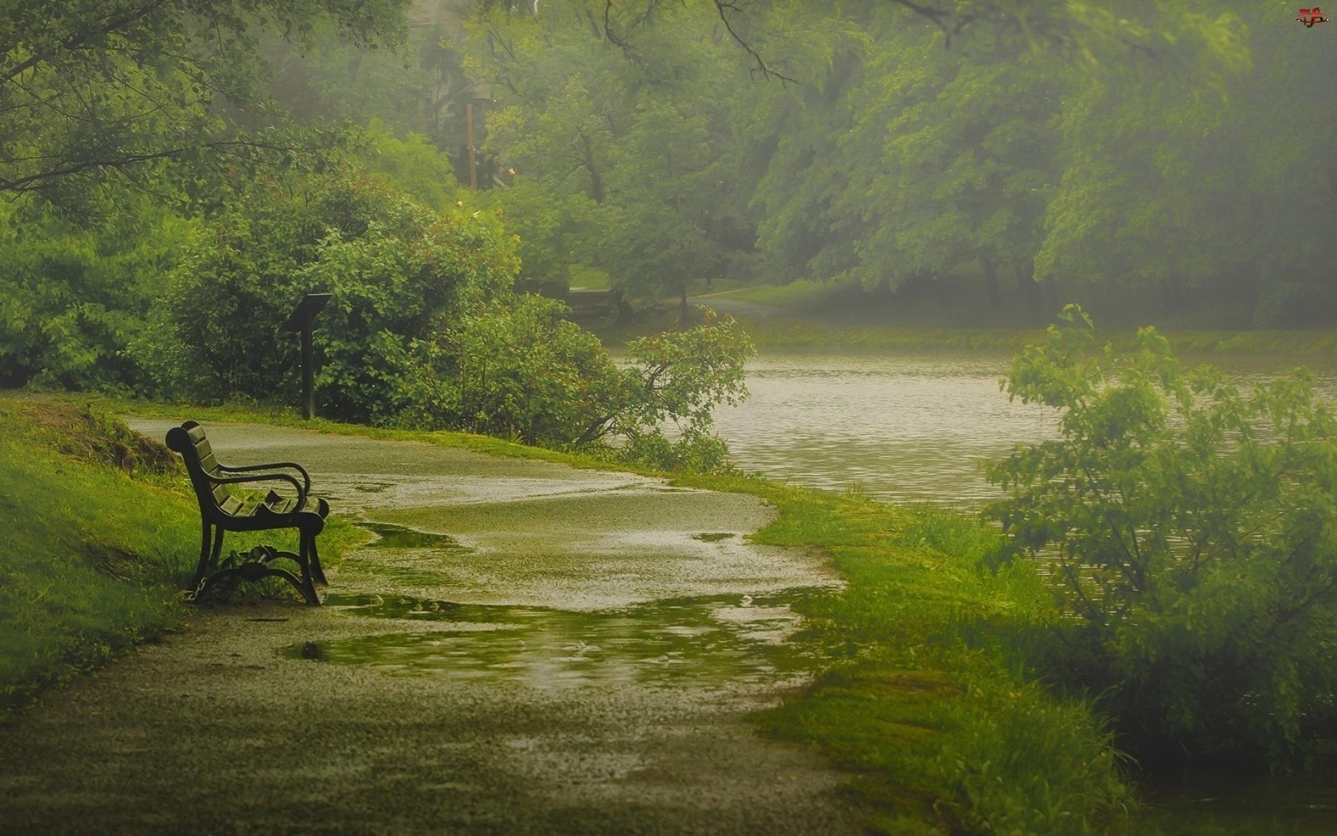 Ławeczka, Rzeka, Las, Mgła