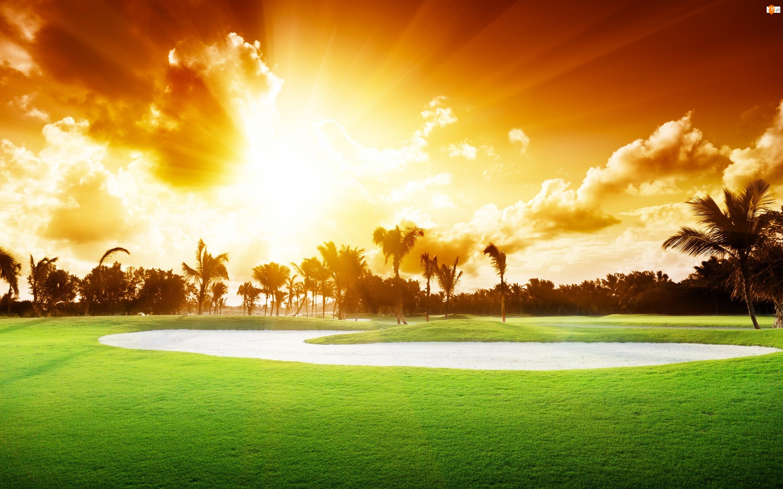 Golfowe, Zachód, Palmy, Słońca, Pole