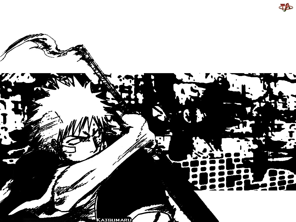ruiny, Bleach, postać