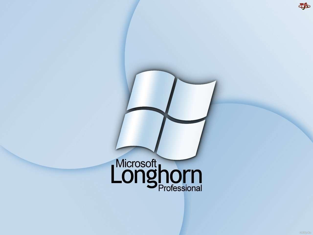 Longhorn, flaga, grafika