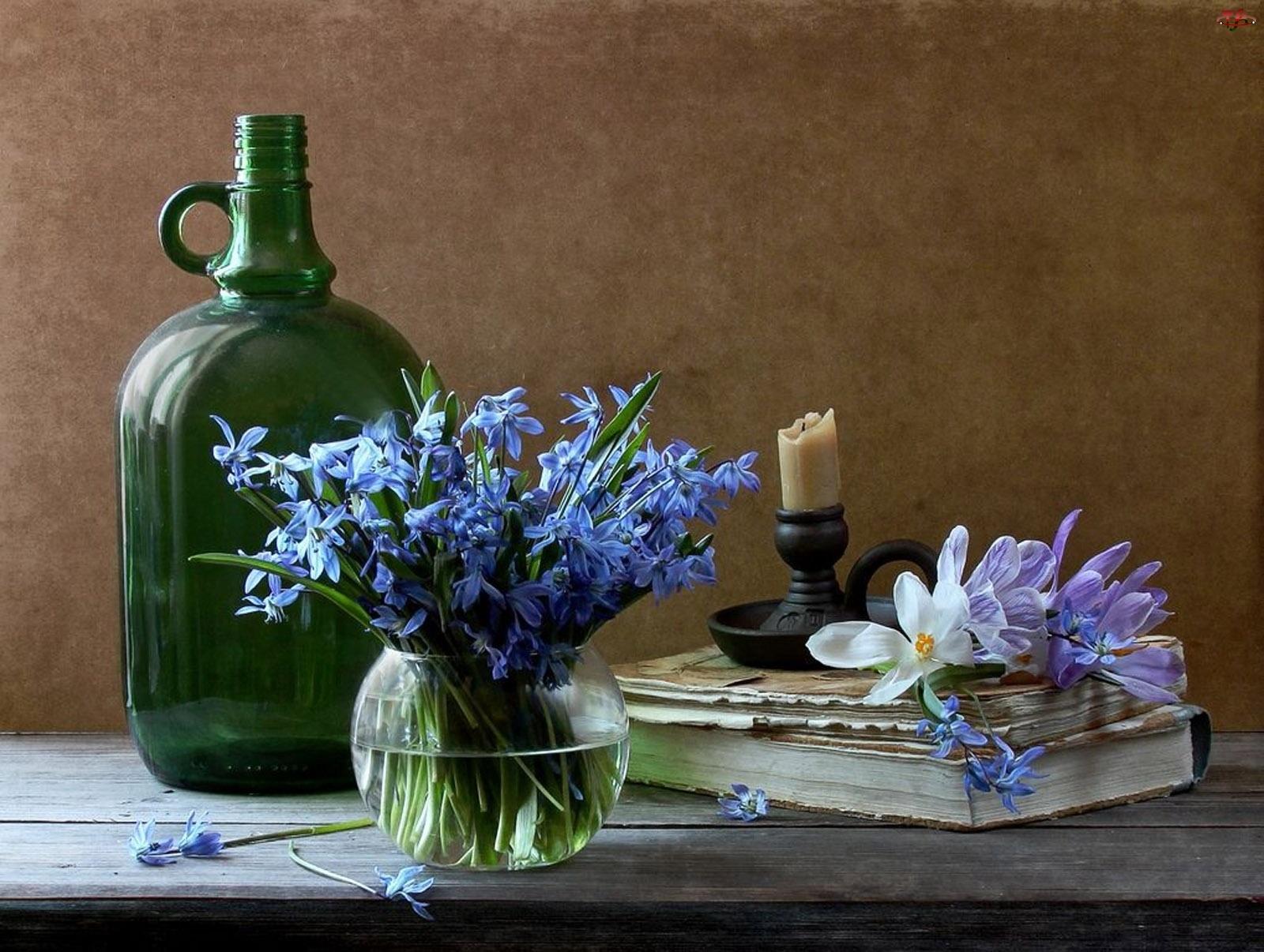Książka, Cebulica, Świecznik, Bukiet Kwiatów