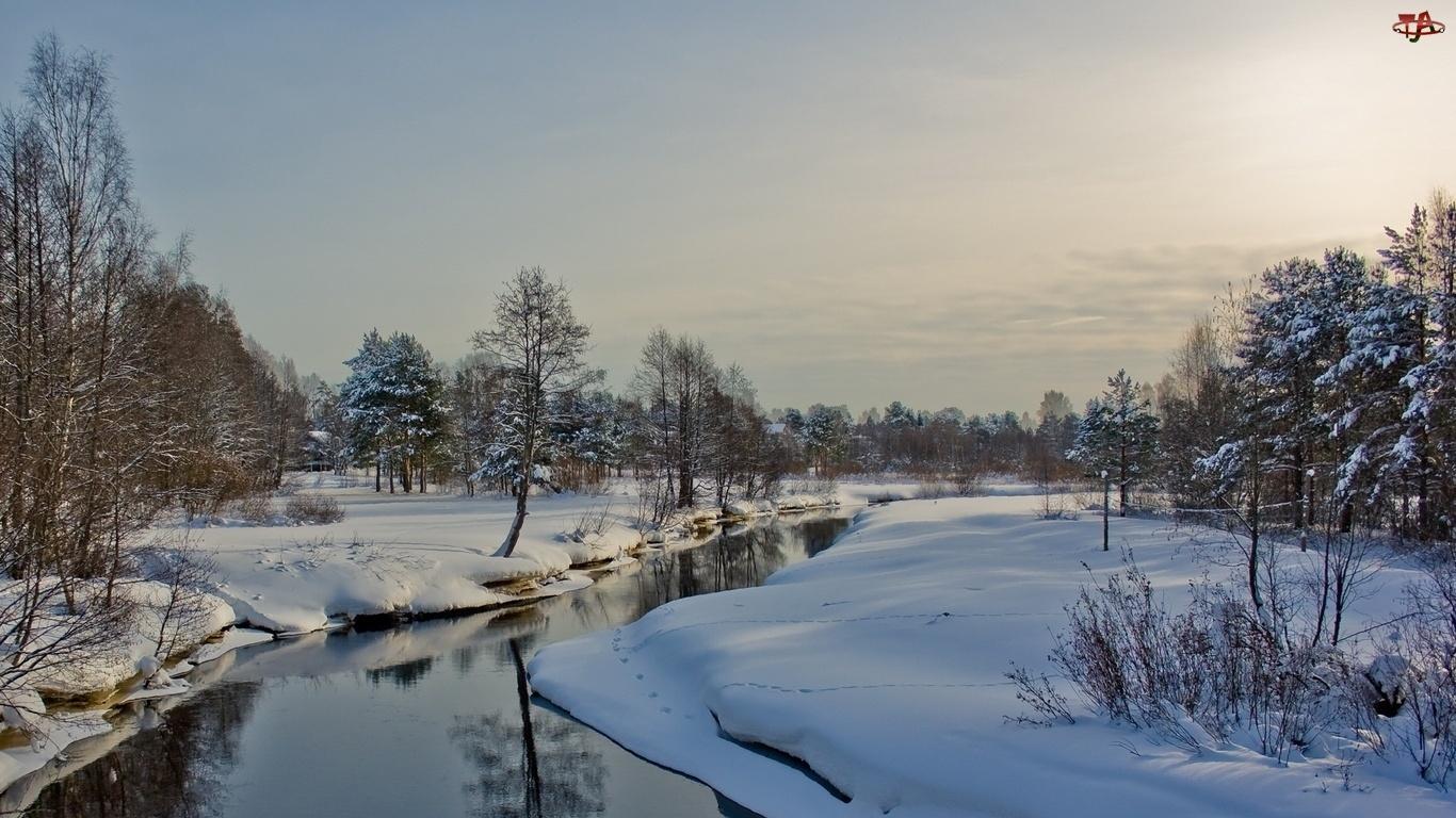 Rzeka, Zima, Śnieg, Drzewa