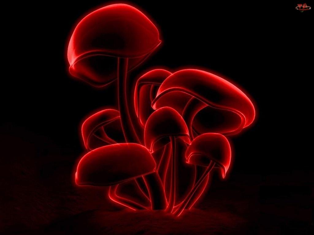 3D, grzyby, Wektorowa, czerwone