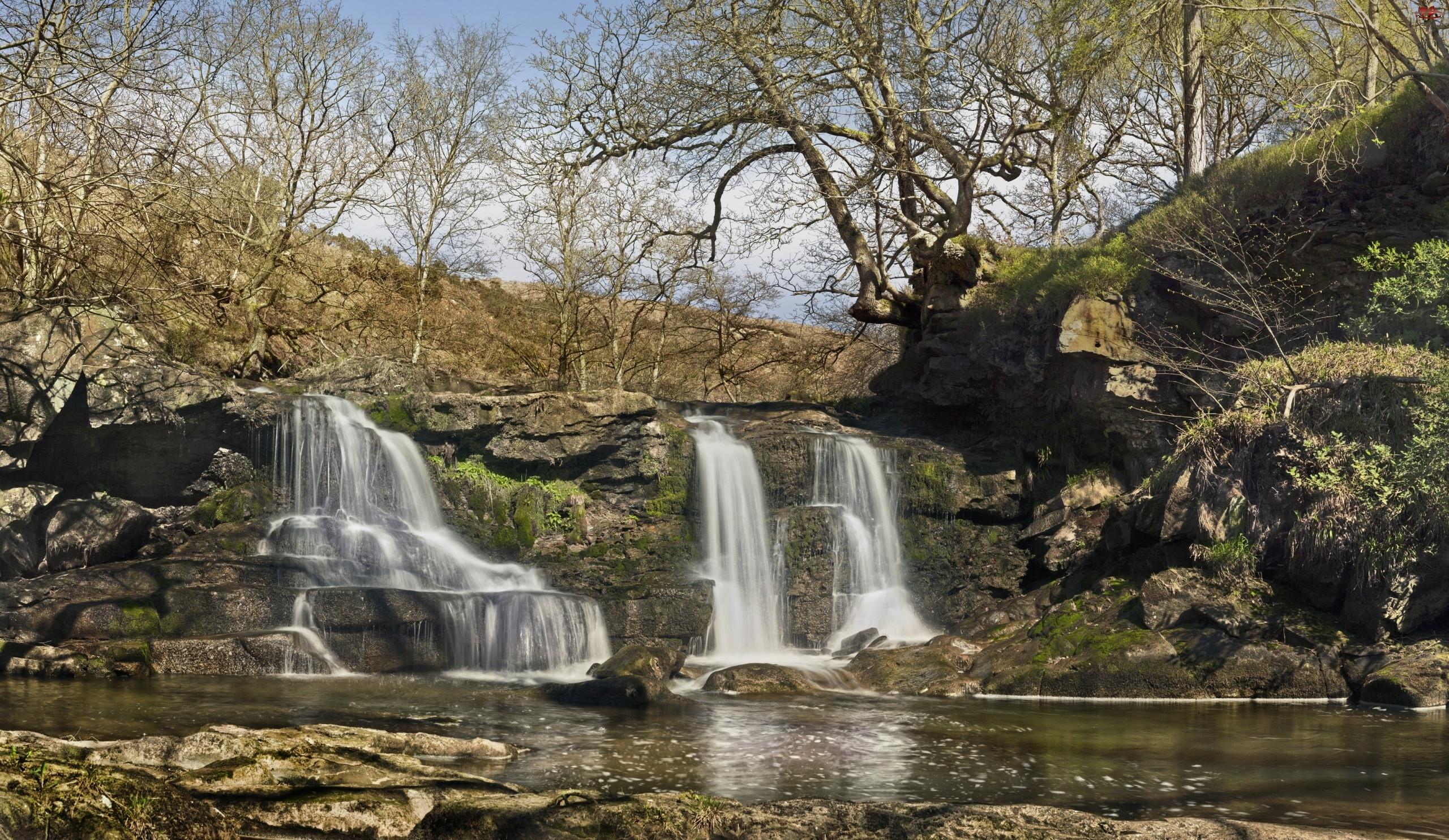 Rzeka, Drzewa, Wodospad, Skały