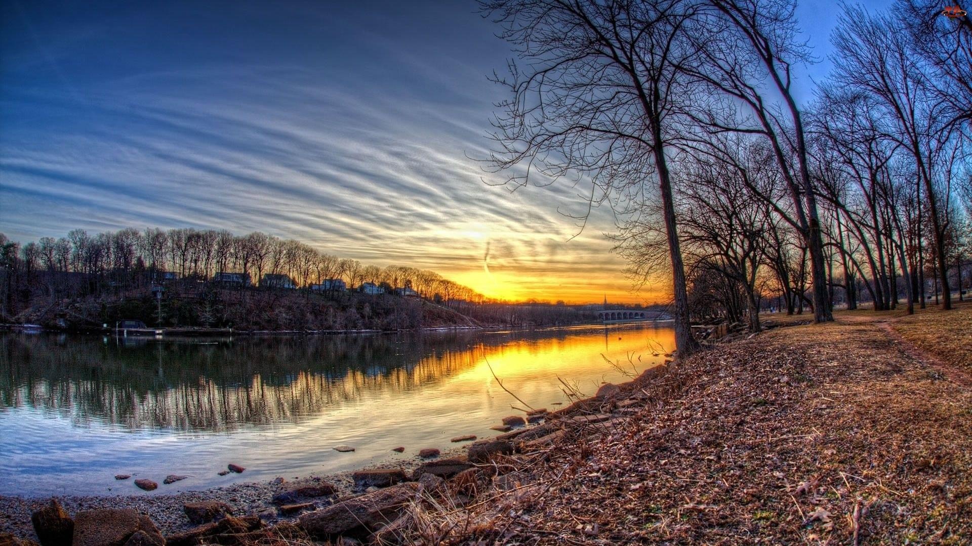 Zachód, Rzeka, Słońca, Drzewa